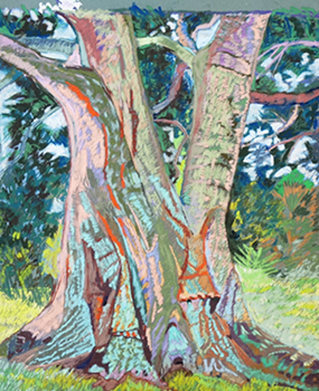 August Oak by Kate Trepagnier