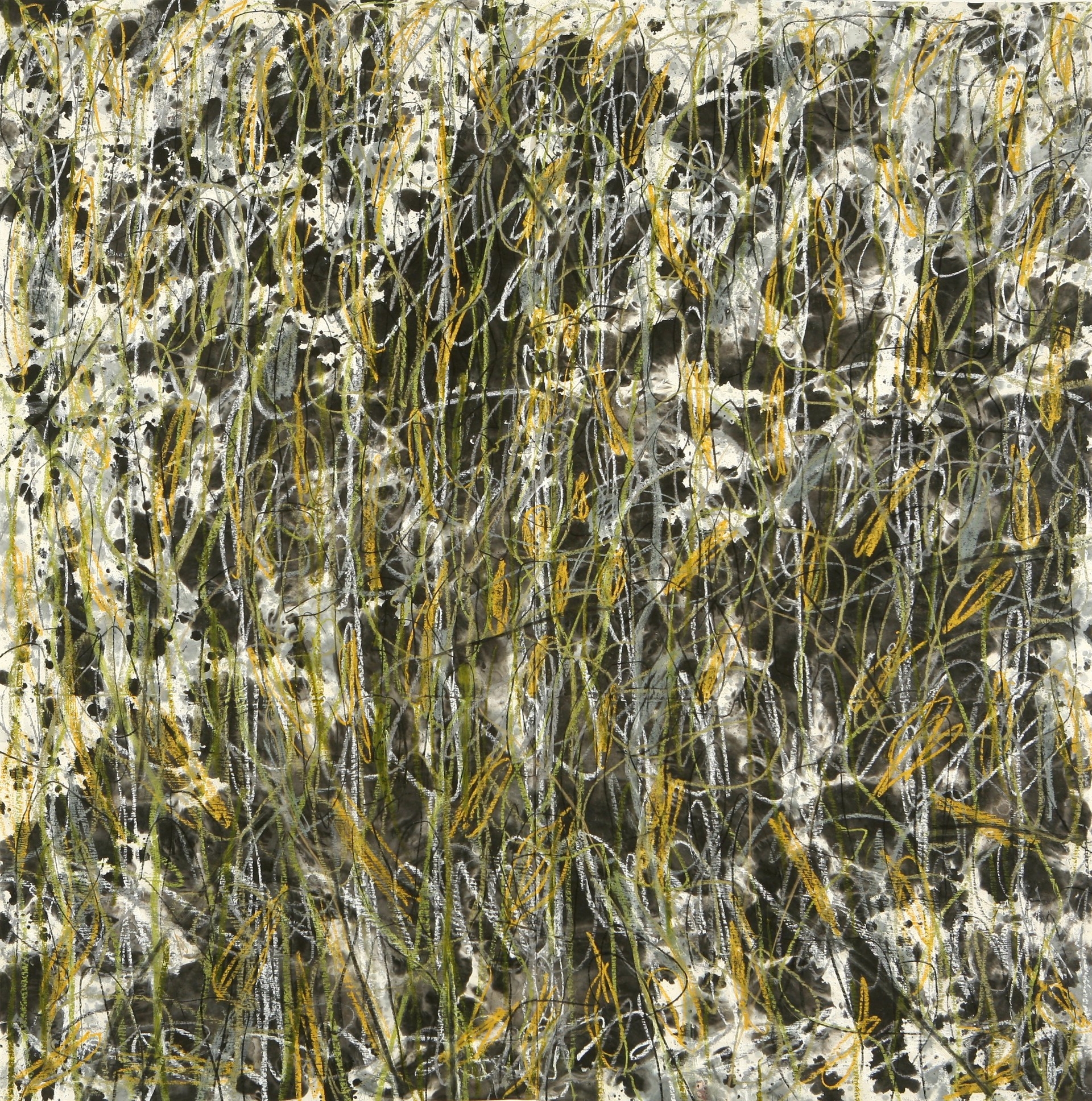 golden falls by Alan Lau