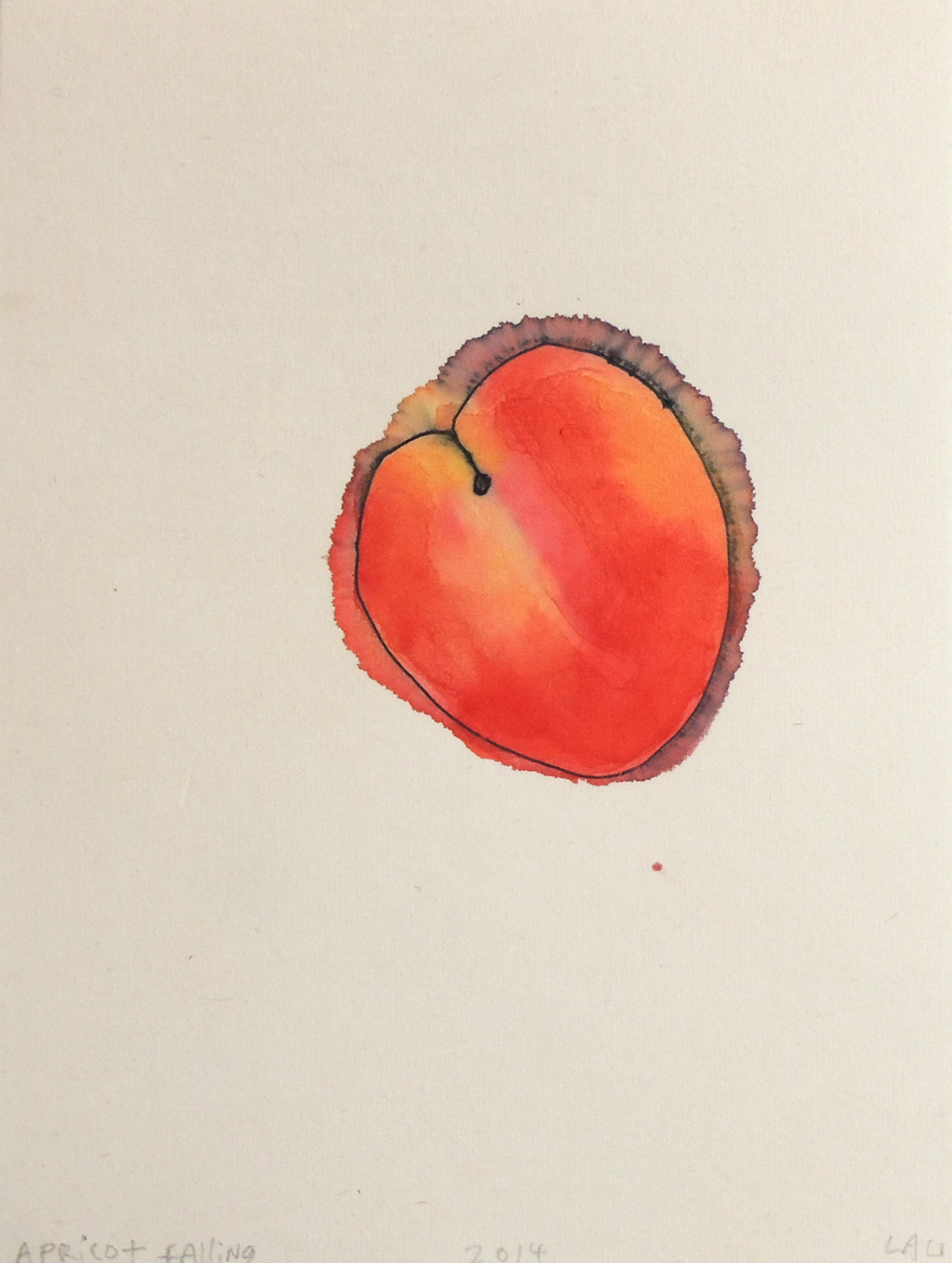 apricot falling by Alan Lau   Small Works