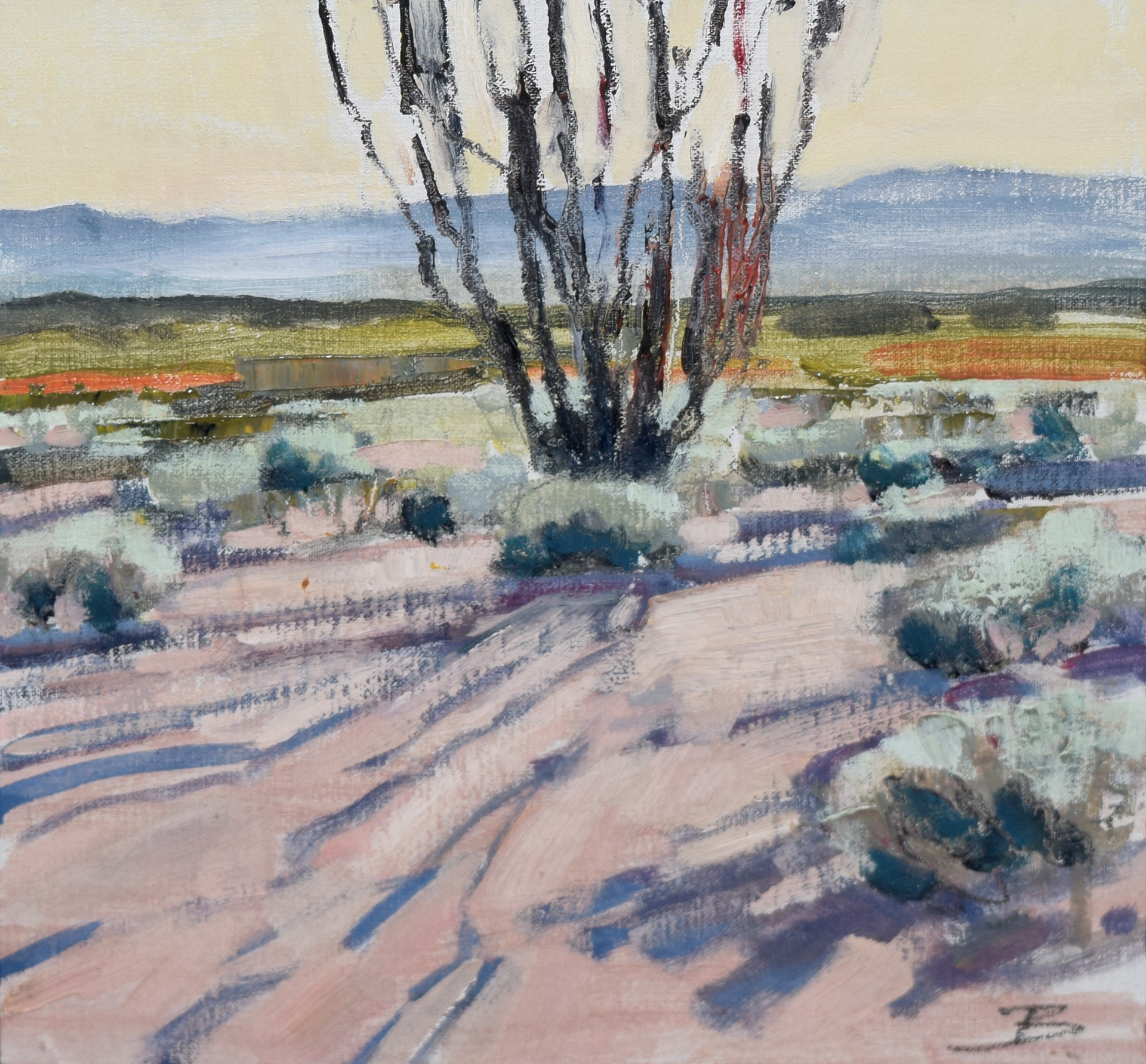 Big Bend Ranch State Park, n. 20 by Mary Baxter