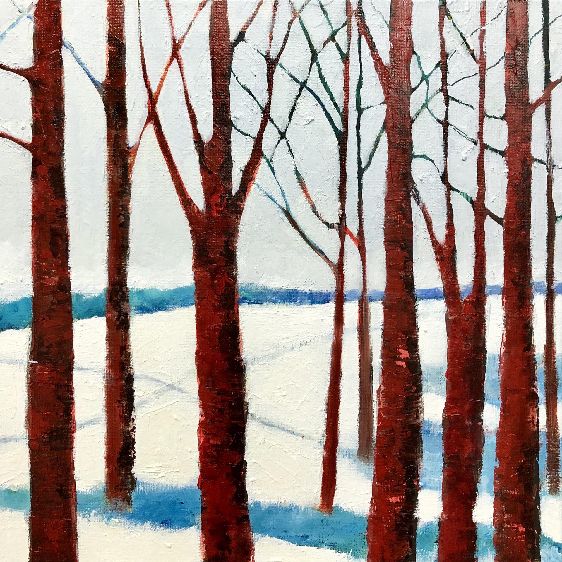 Cross Country 2 by Kimberly Wheaton