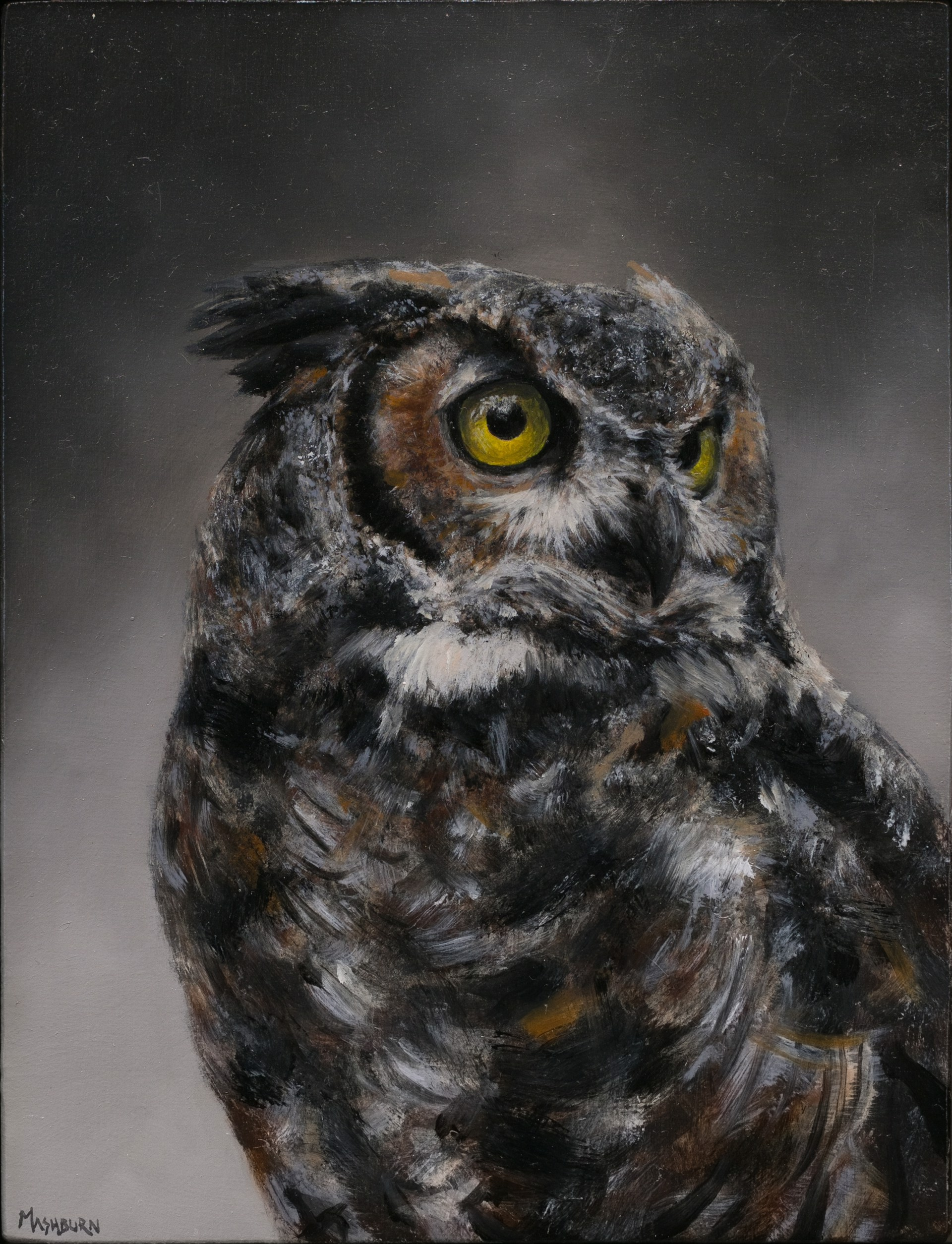 Great Horned Study by Brian Mashburn