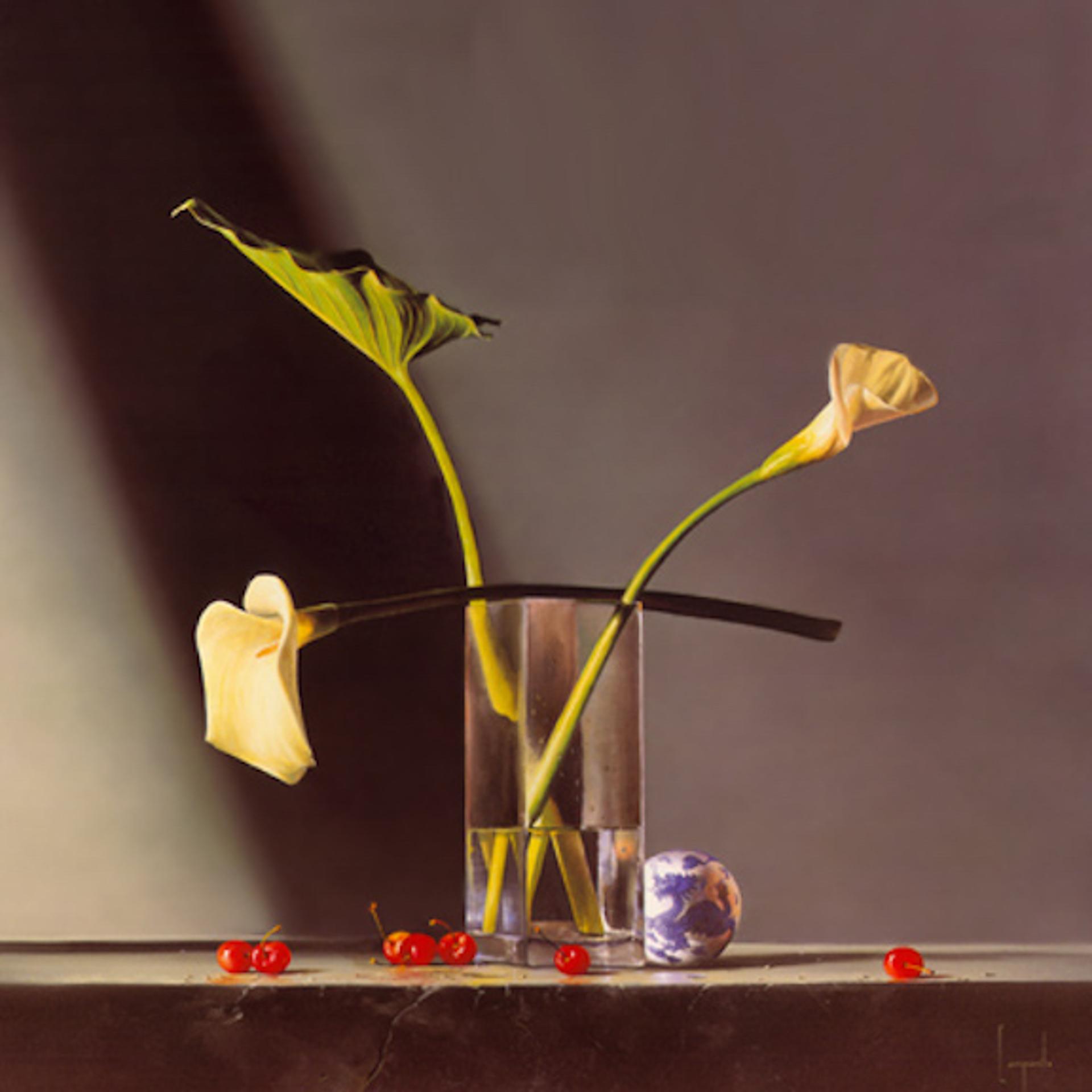 Dragon Lily by Dario Campanile