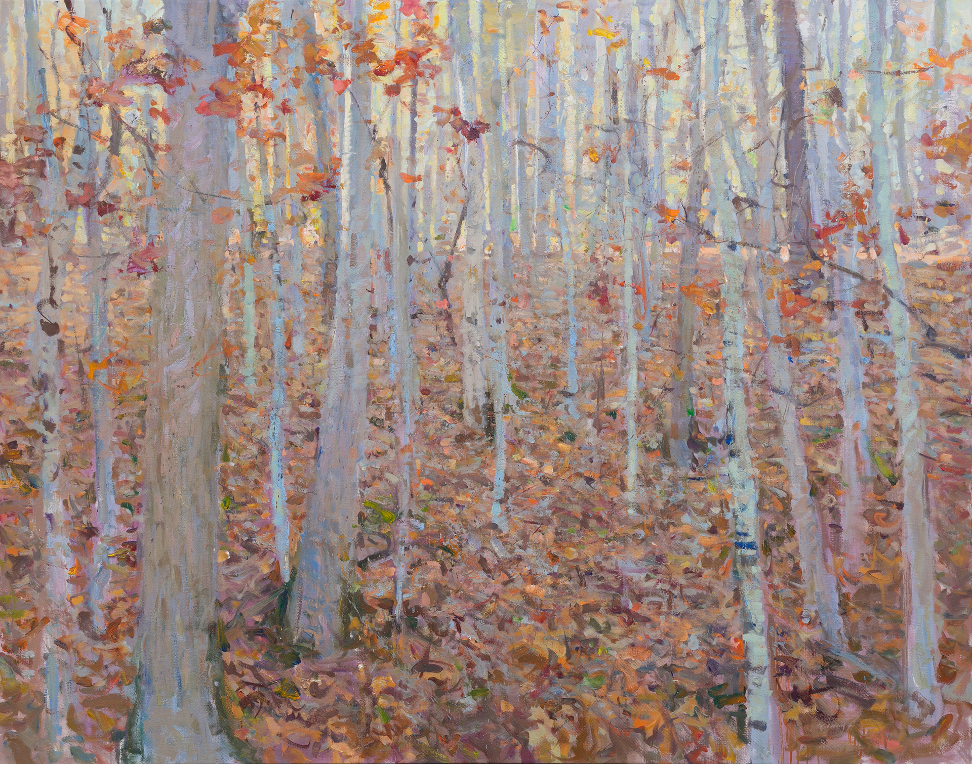 Autumn Woods by Quang Ho