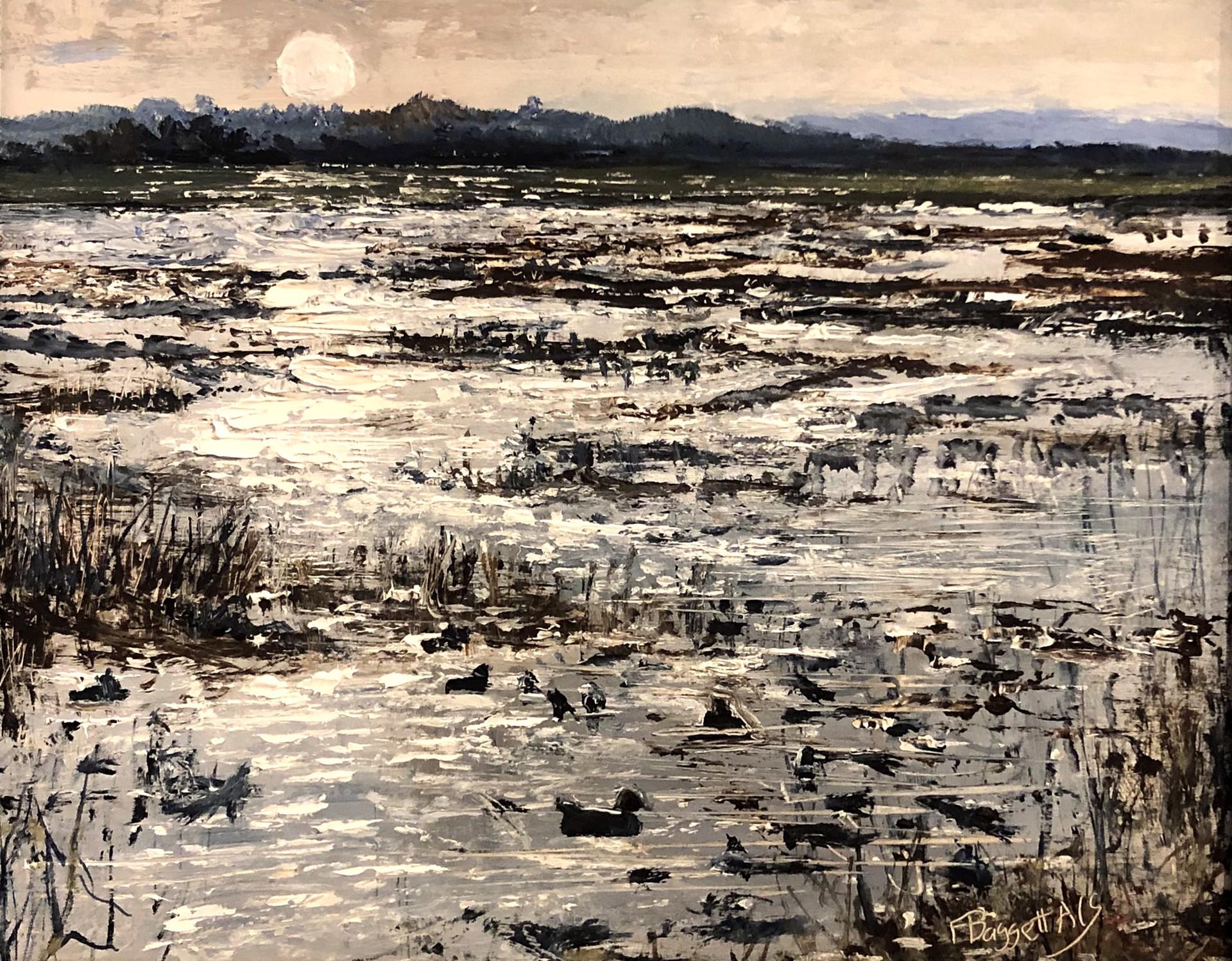 Moonlit Marsh by Frank Baggett
