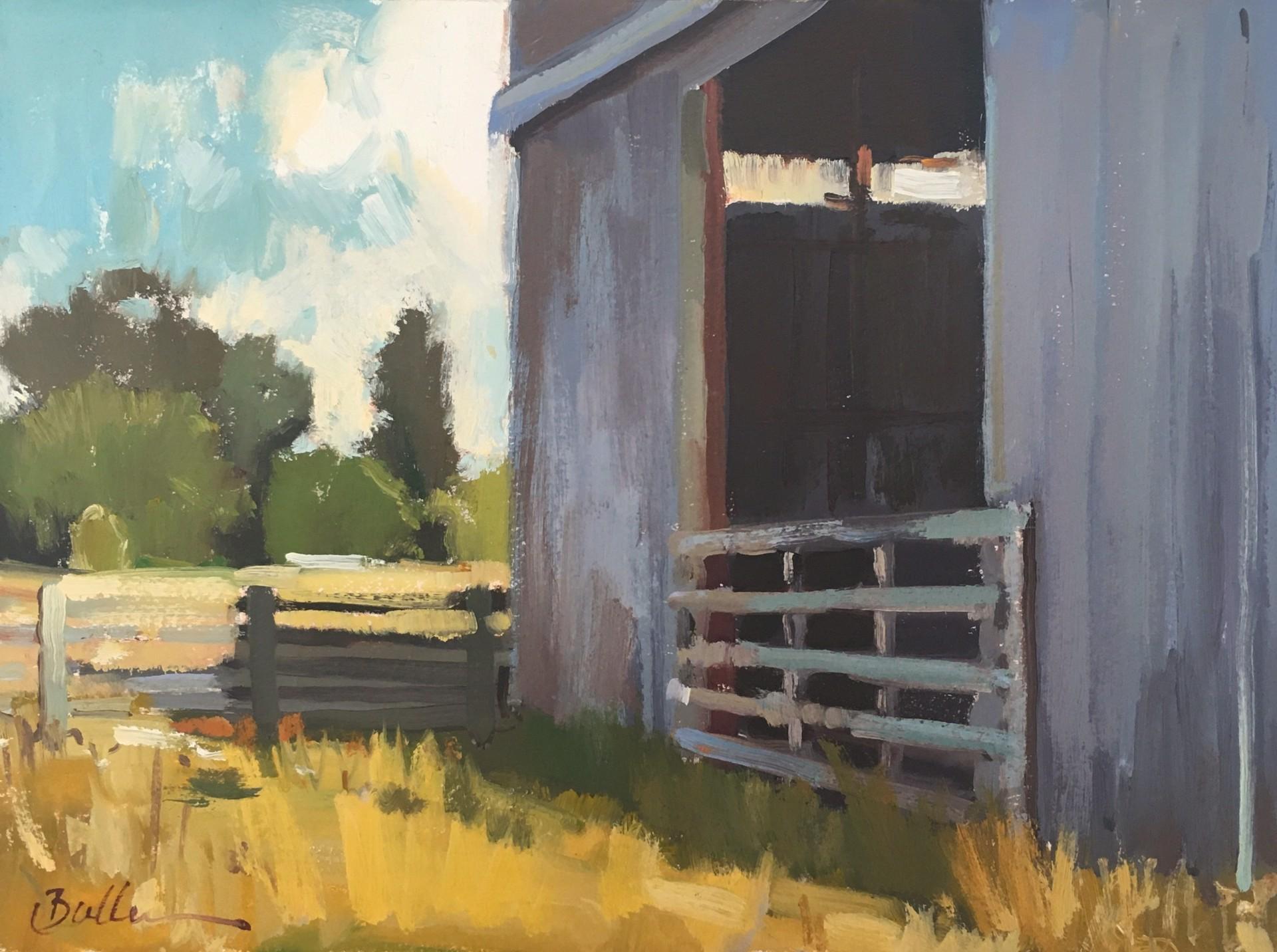 Tin Barn by Samantha Buller