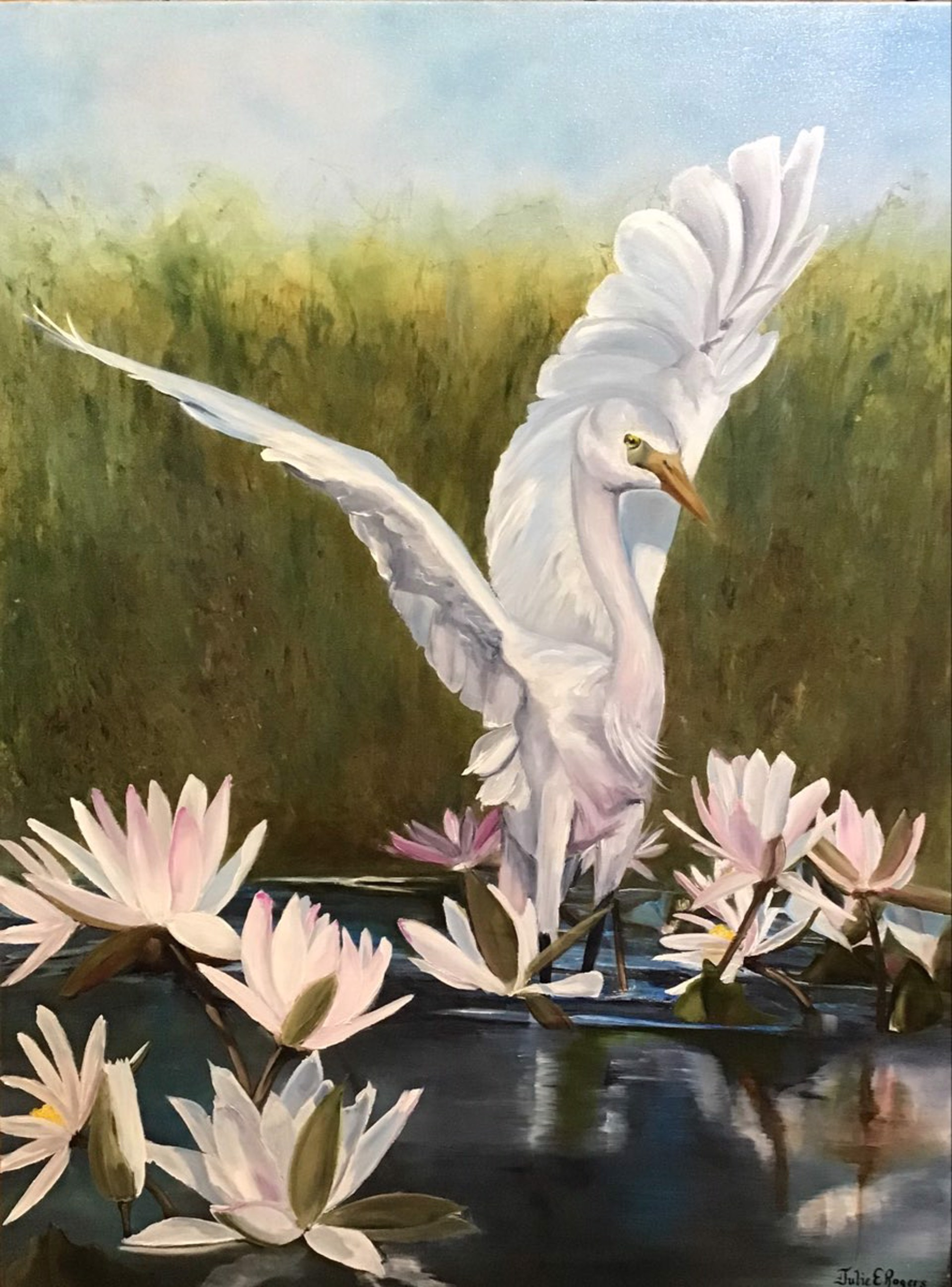 Lily Reflections by Julie Rogers