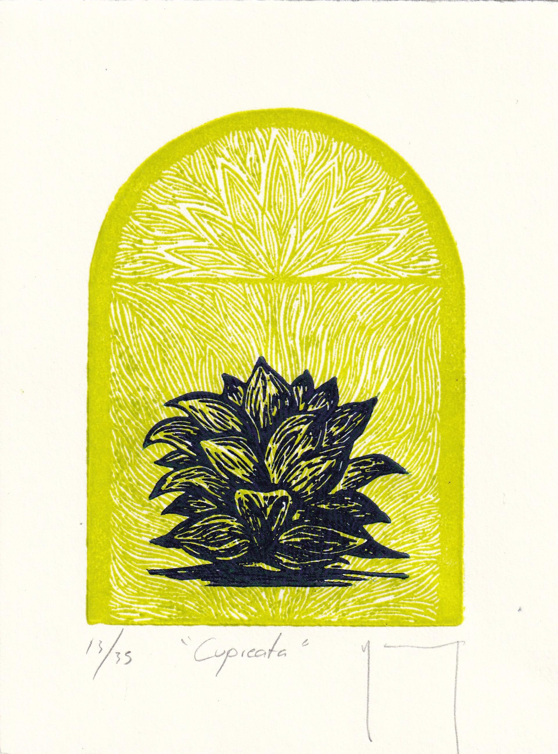 Cupreata by Miguel Jimenez Martinez