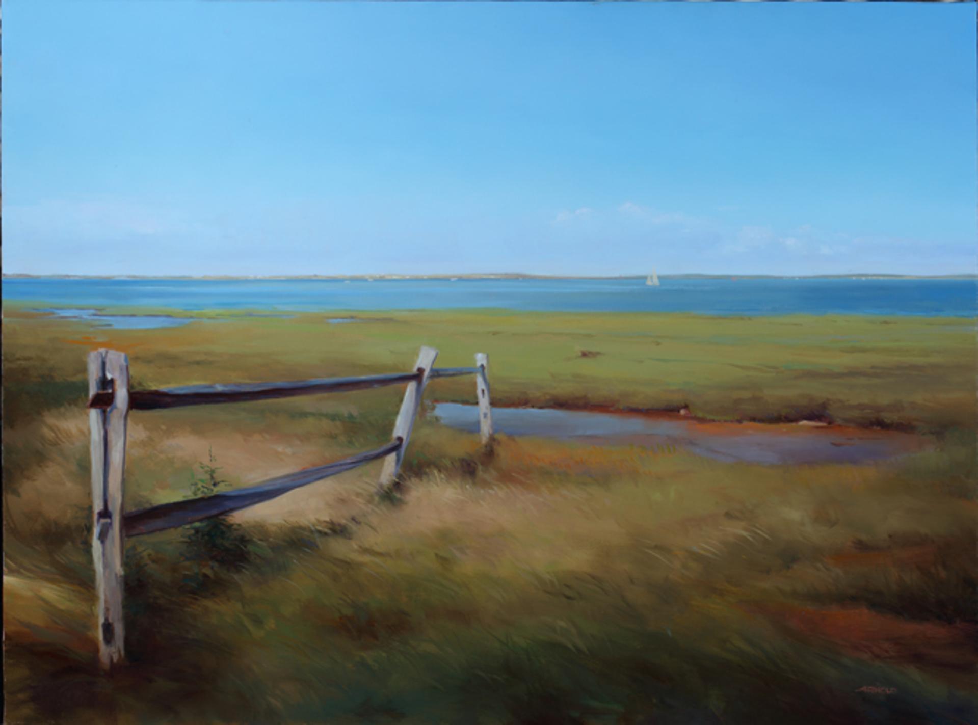 Breeze on the Marsh by Arnold Desmarais