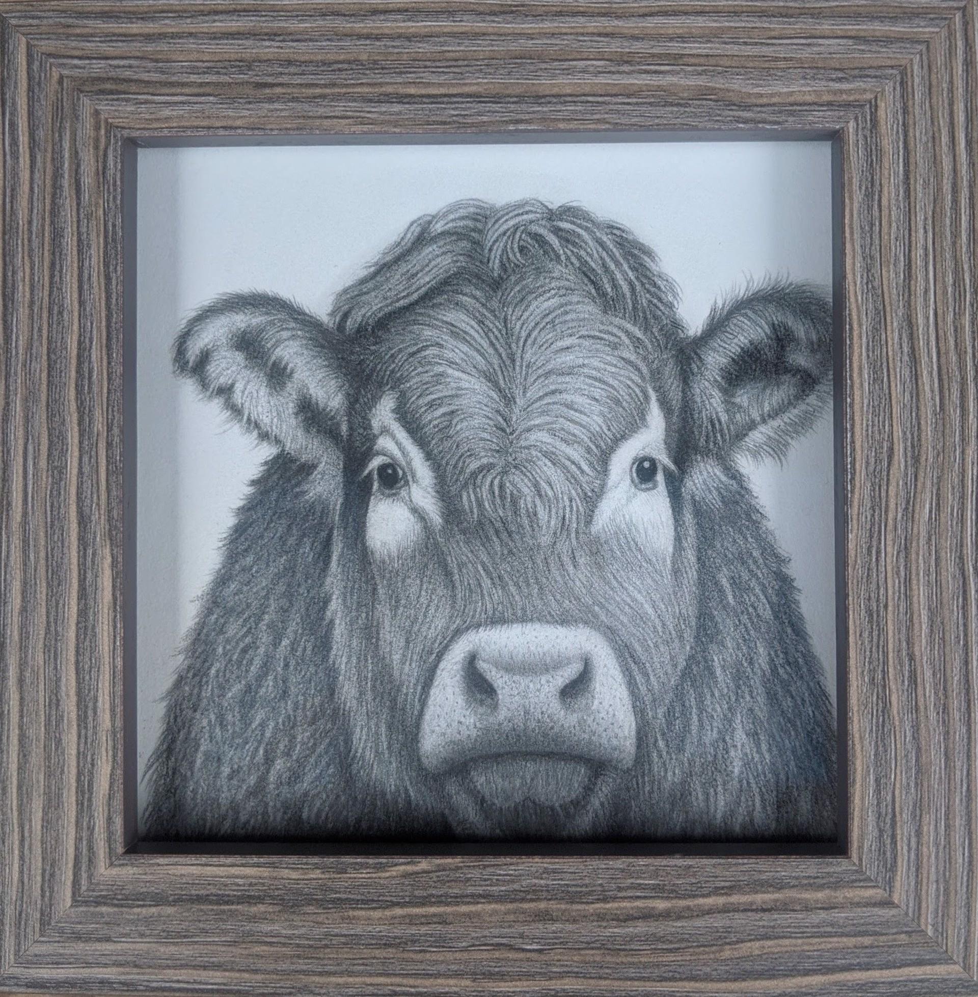 Bessie by Tammy Liu-Haller