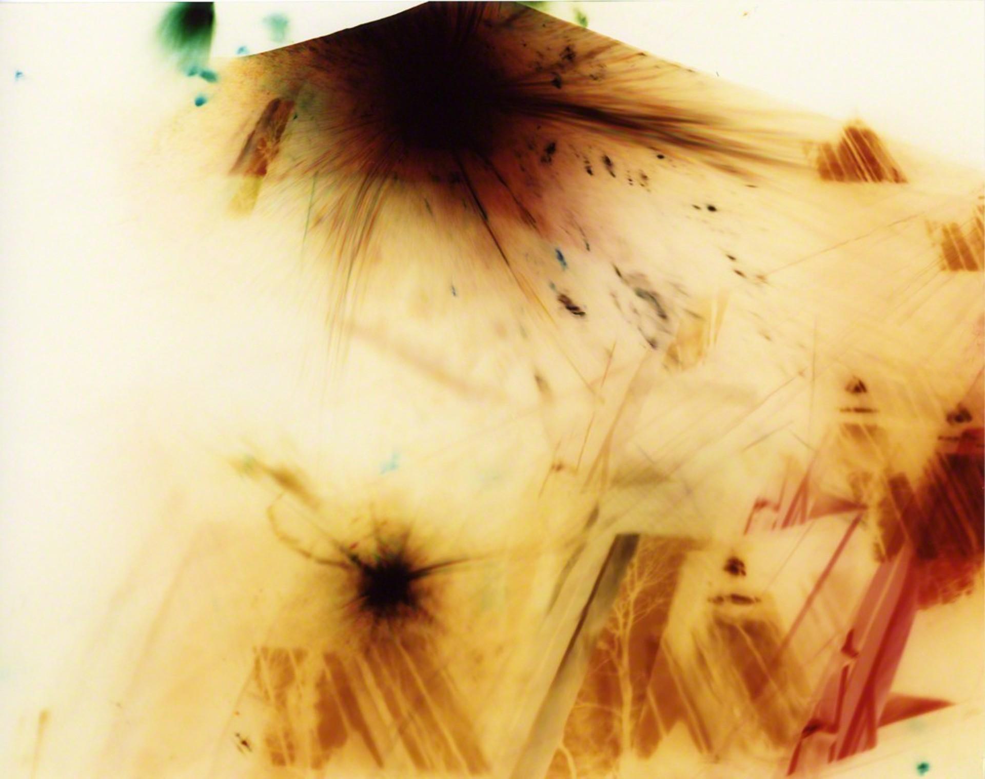 Pinhole 023 by Natalie Cheung
