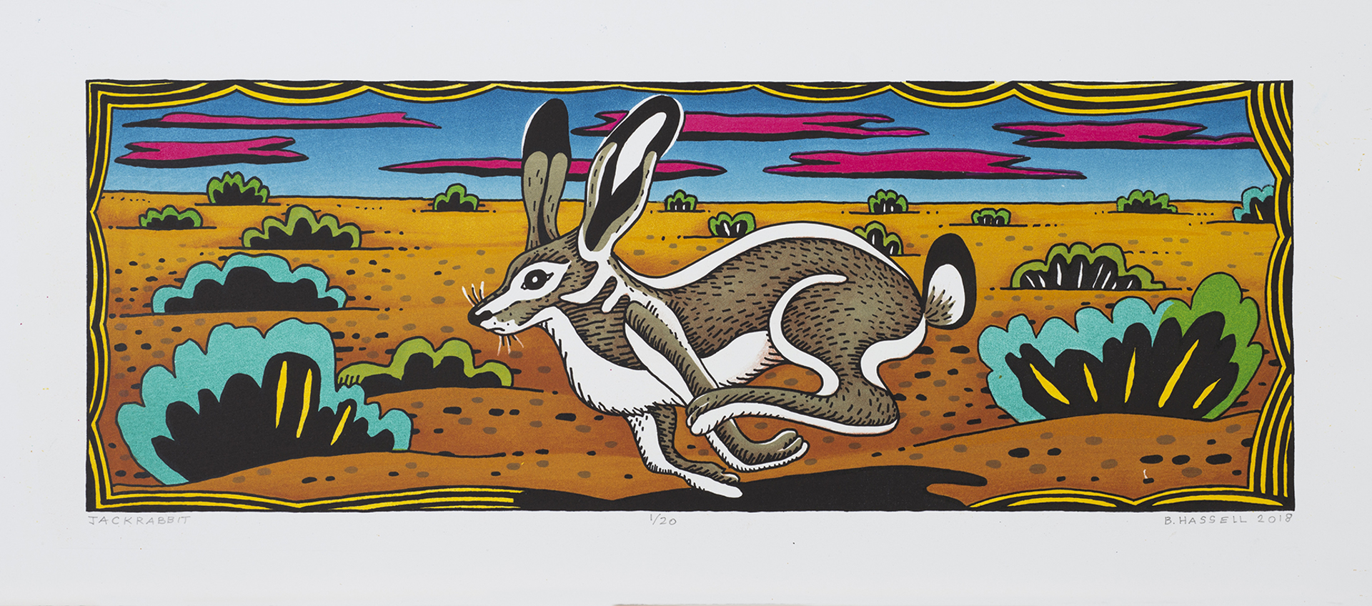 Jackrabbit by Billy Hassell