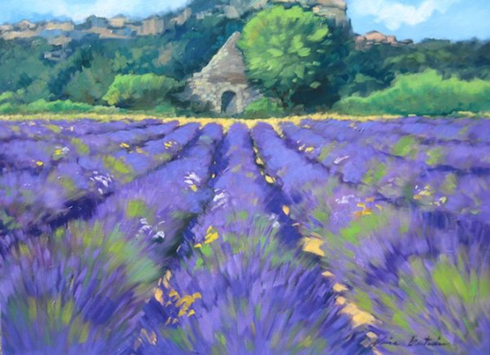 Borie In The Lavender Field by Maria Bertrán
