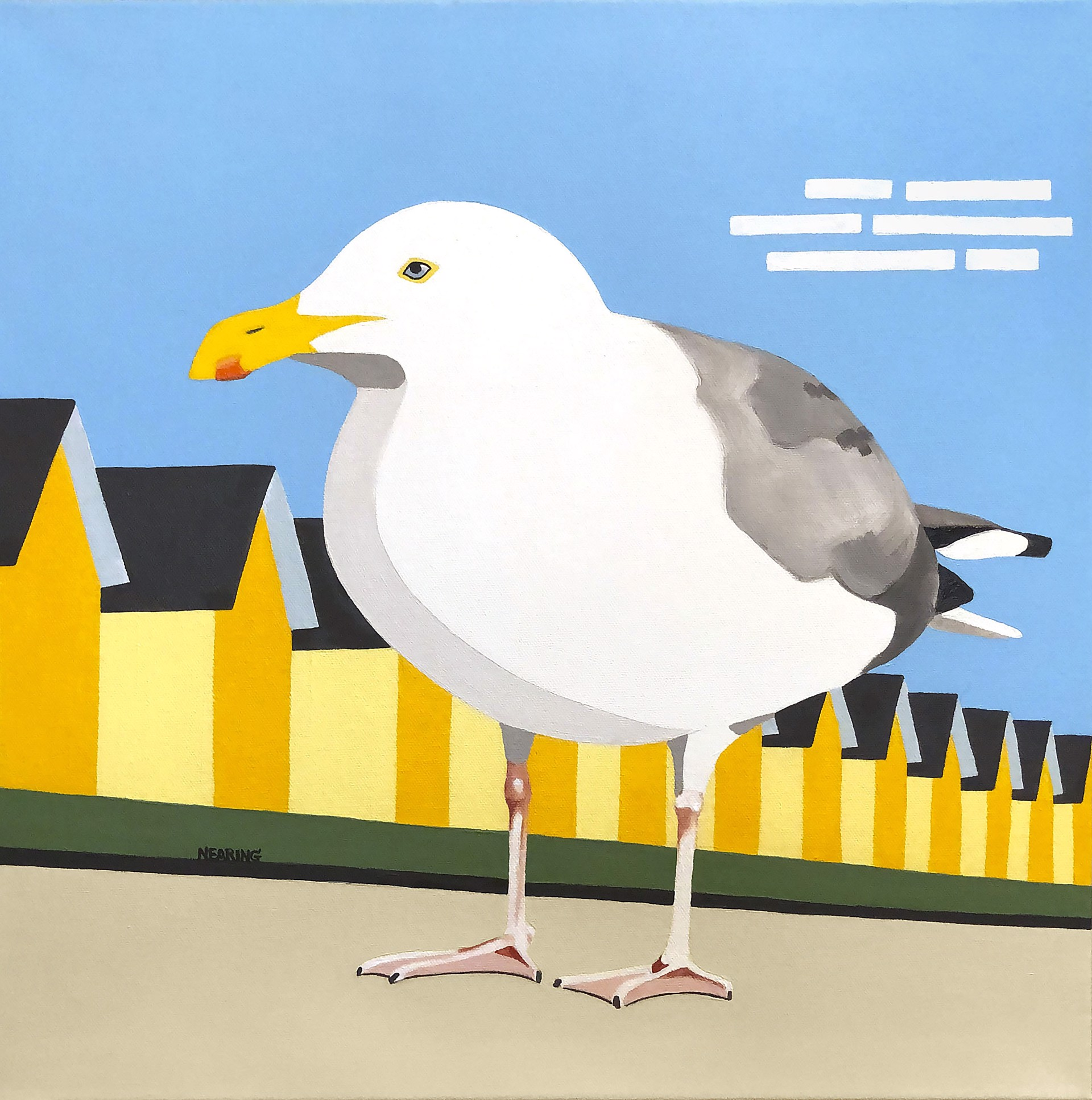 Cape Gull (Limited Edition Print 5/25) by Dan Nearing