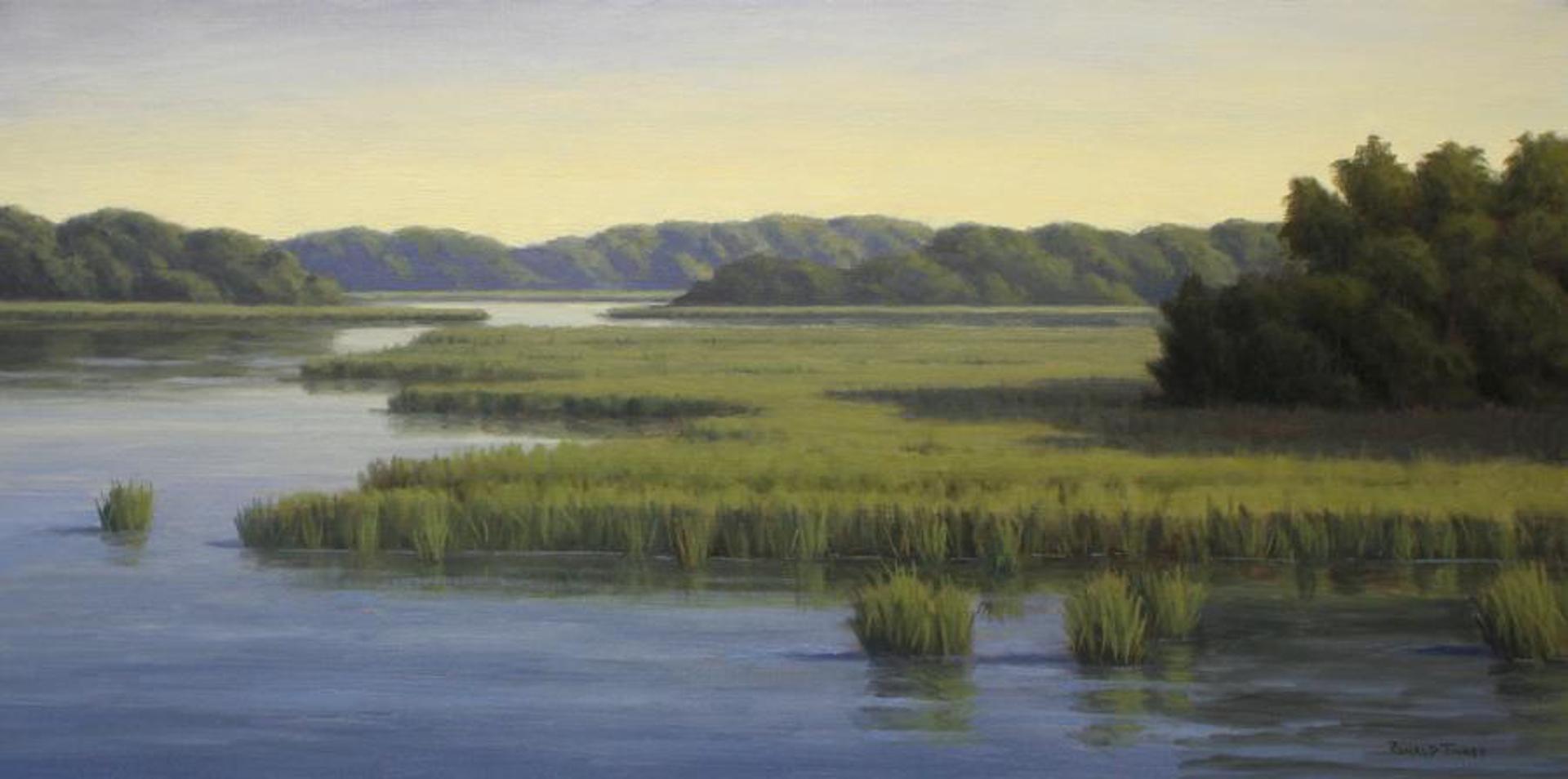 Calm Beauty by Ronald Tinney