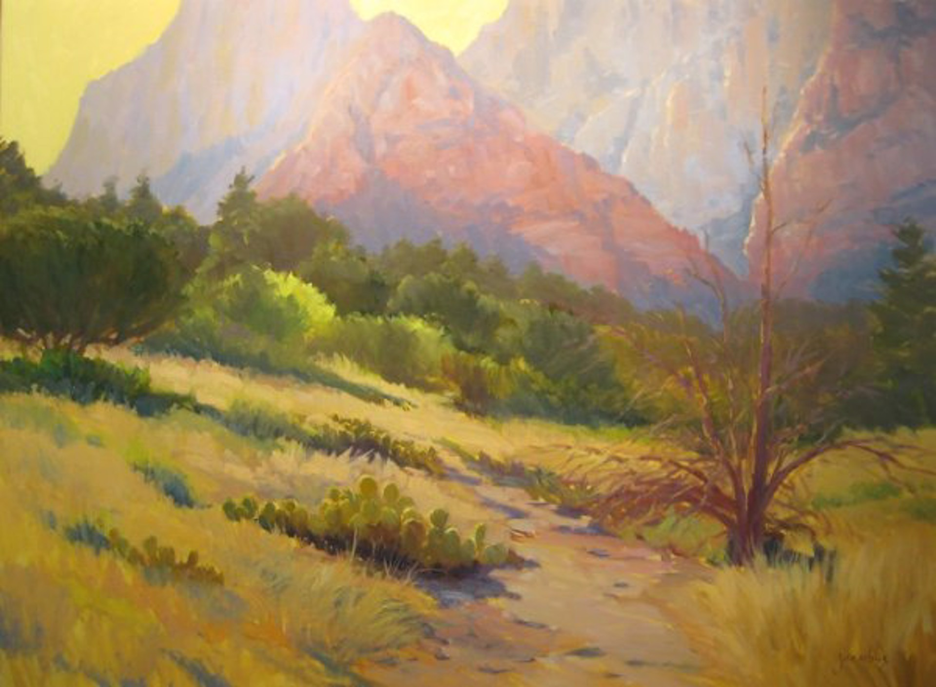 Afternoon Light Sedona by Jacobus Baas