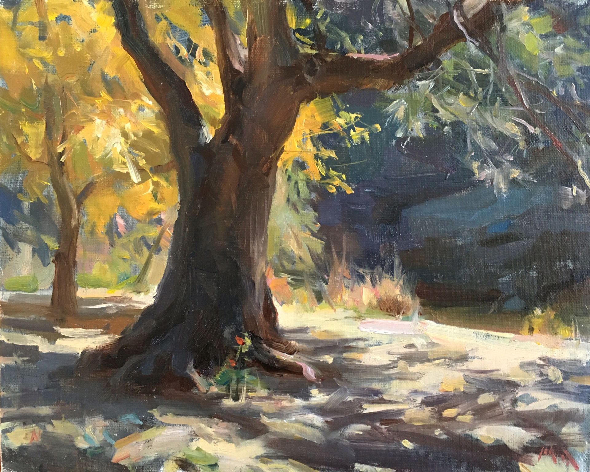 Bull Creek Autumn by Kyle Ma
