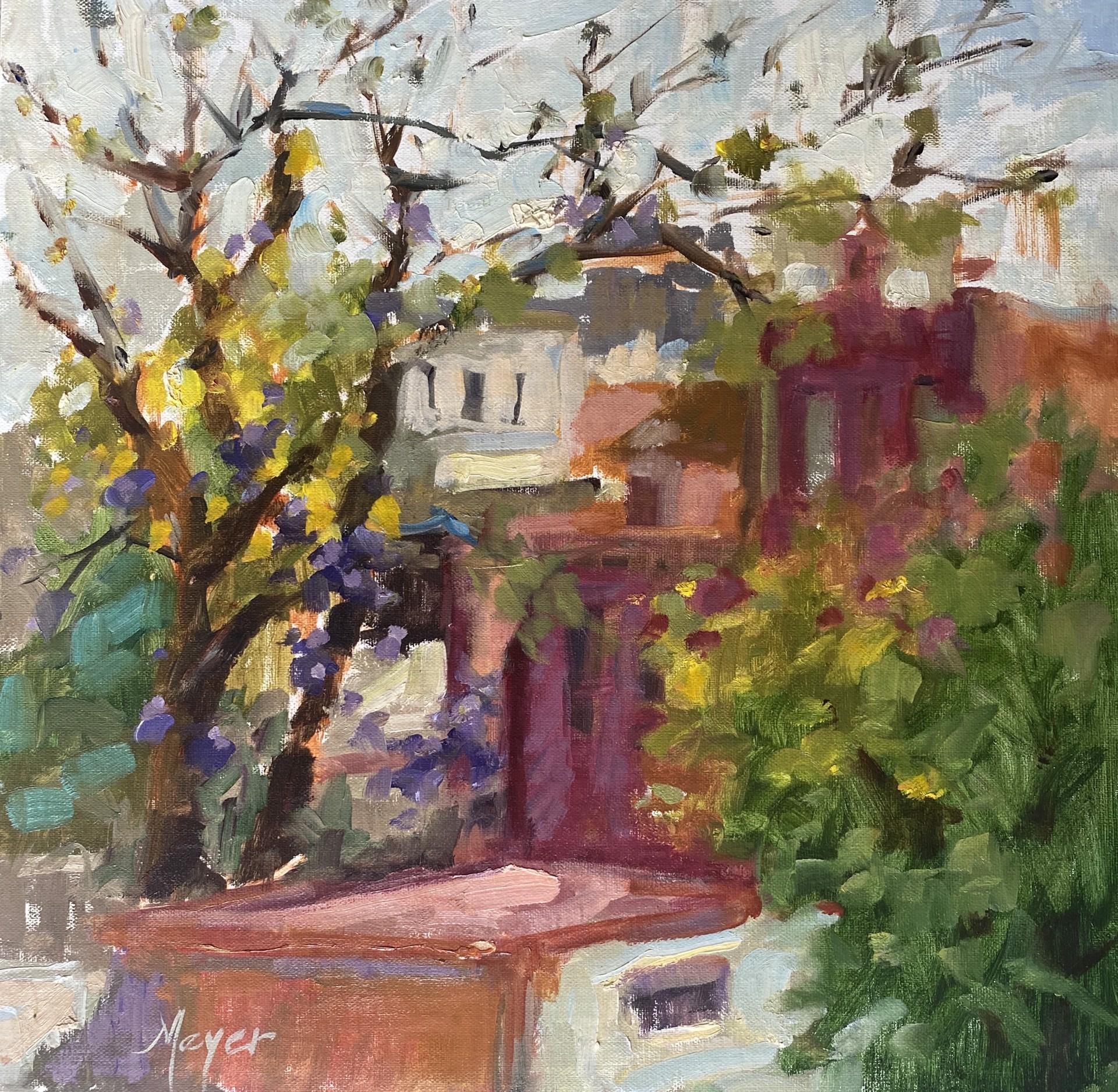 San Miguel Rooftop, II by Laurie Meyer