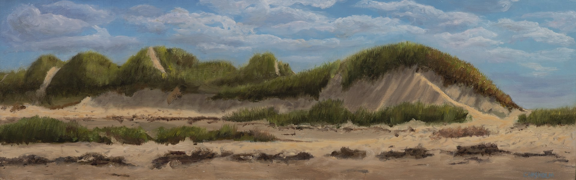 Dune Portrait by Bill Chisholm