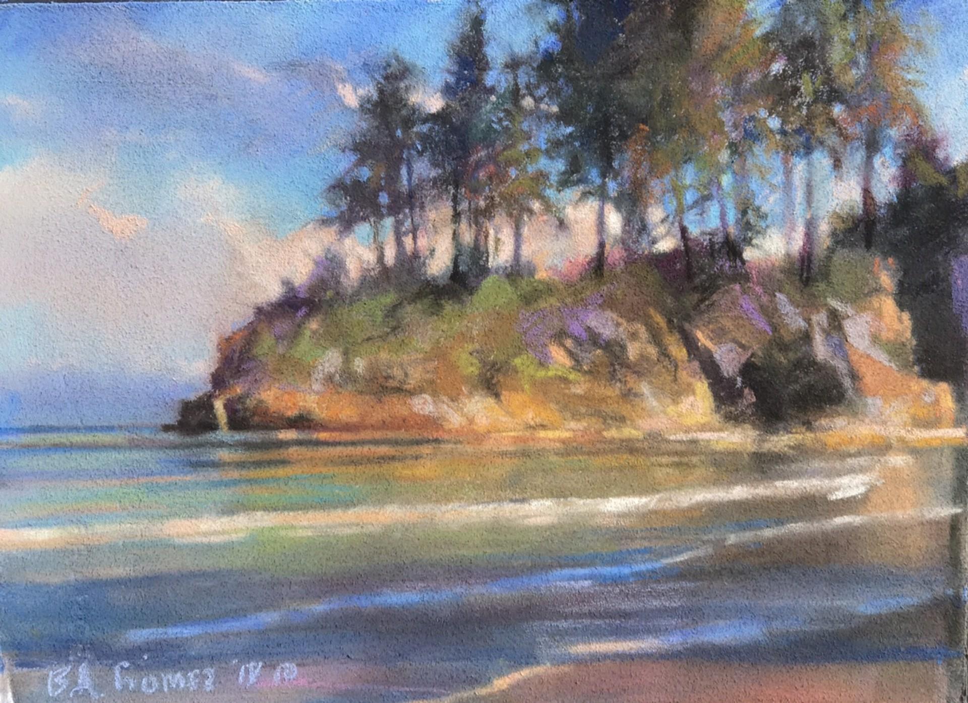 Salt Creek Study by Bruce A Gómez
