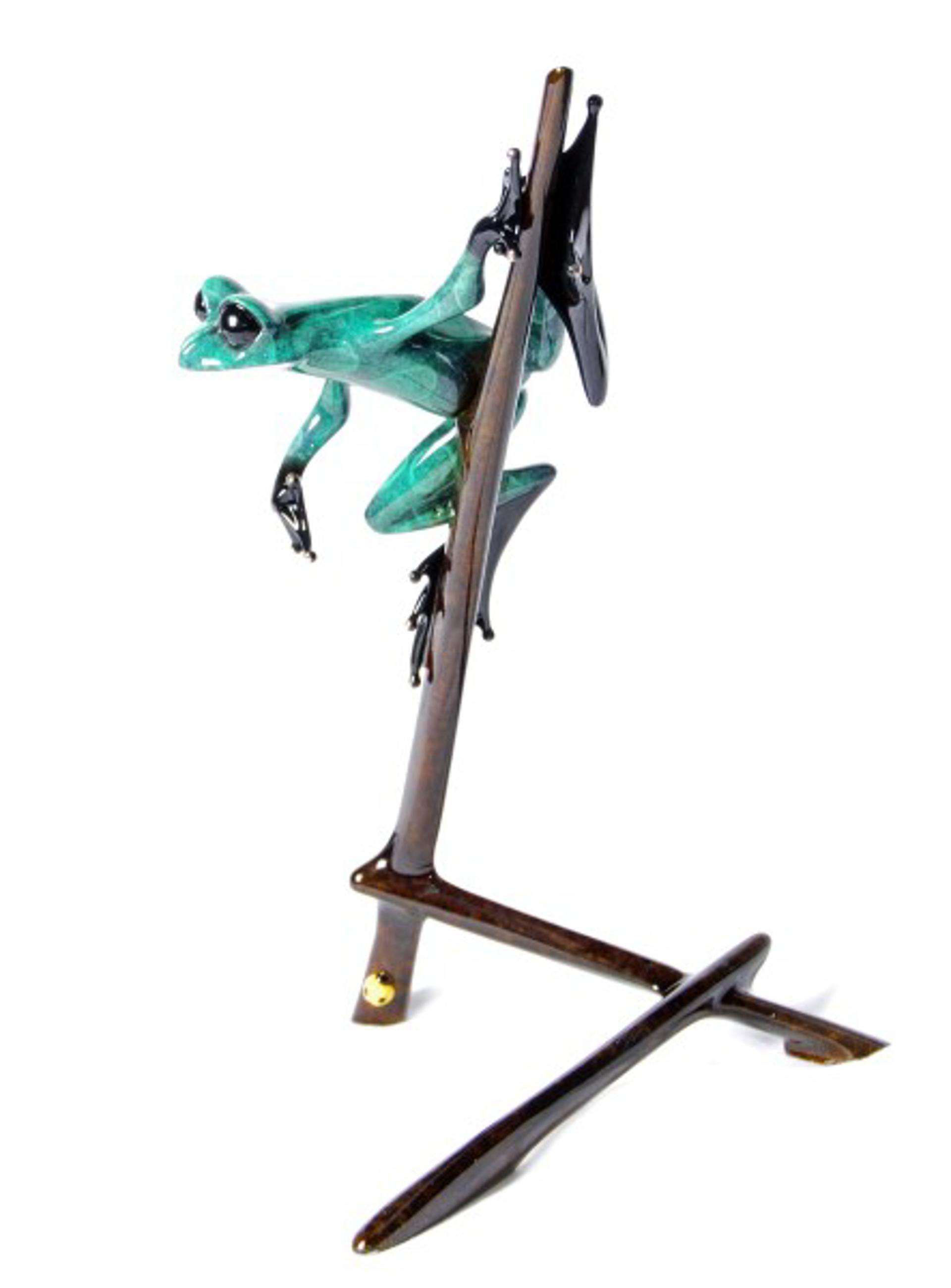 I-Spy by The Frogman