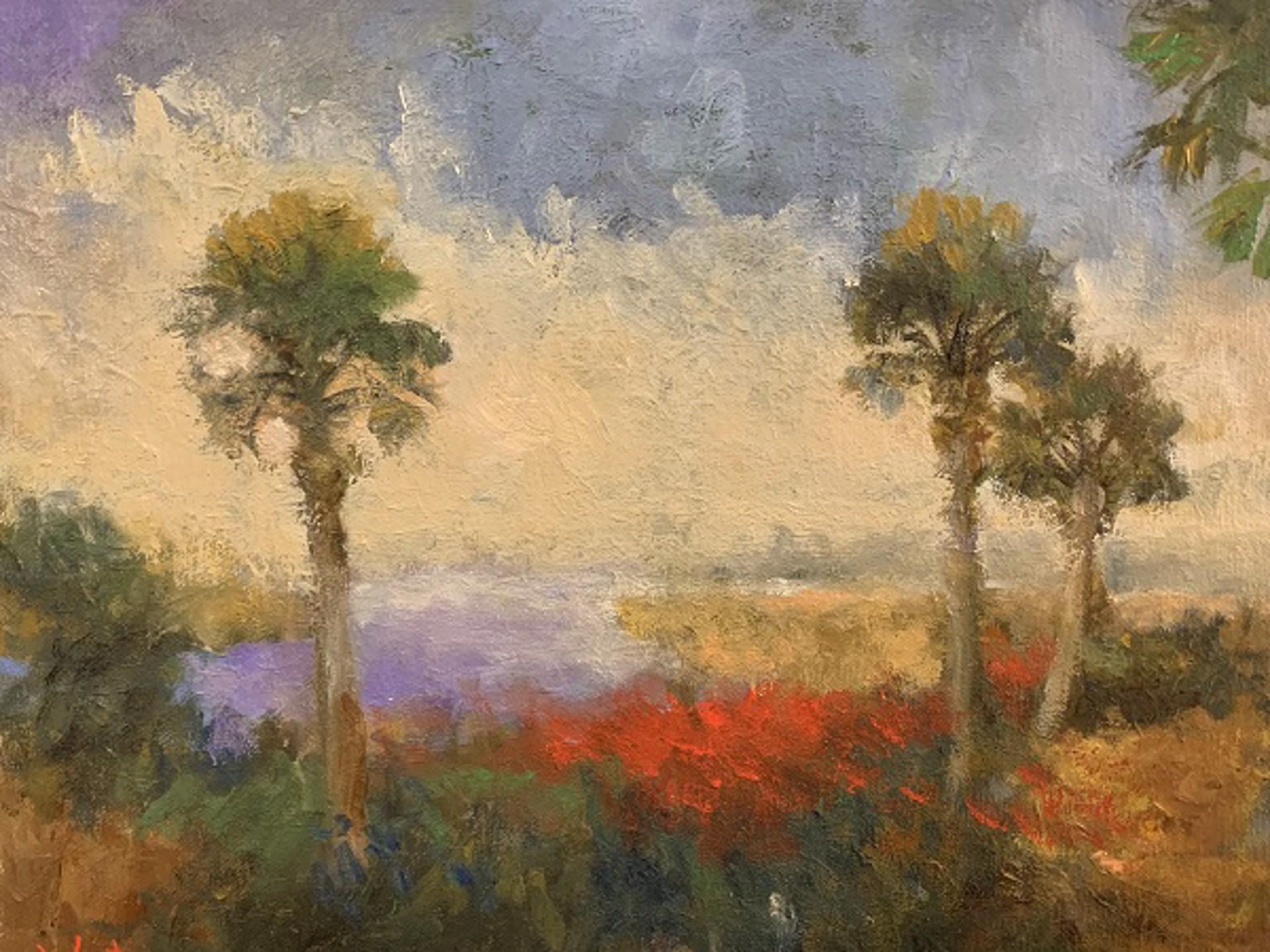 Sunset Trio by Jim Darlington