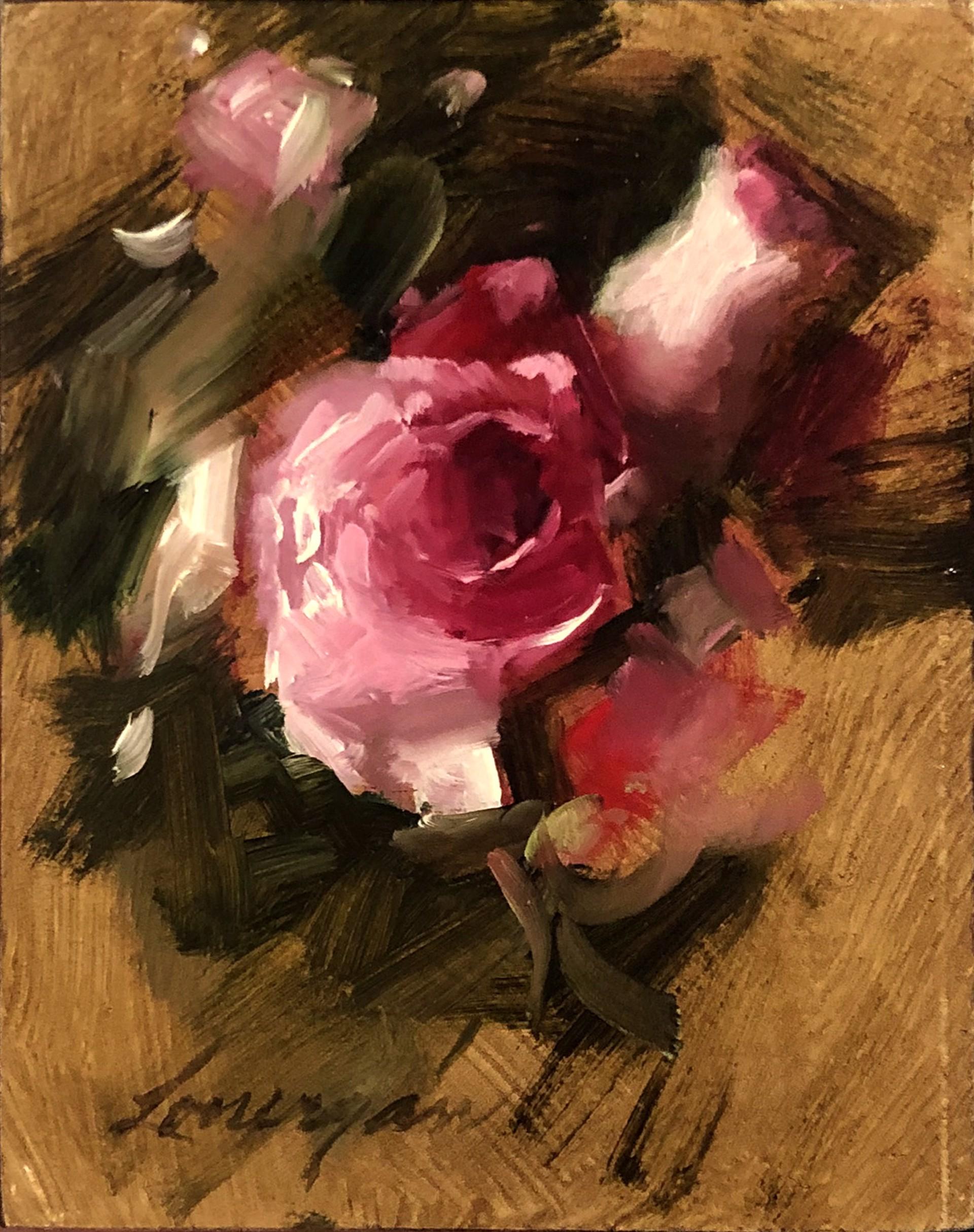 Roses by John Lonergan