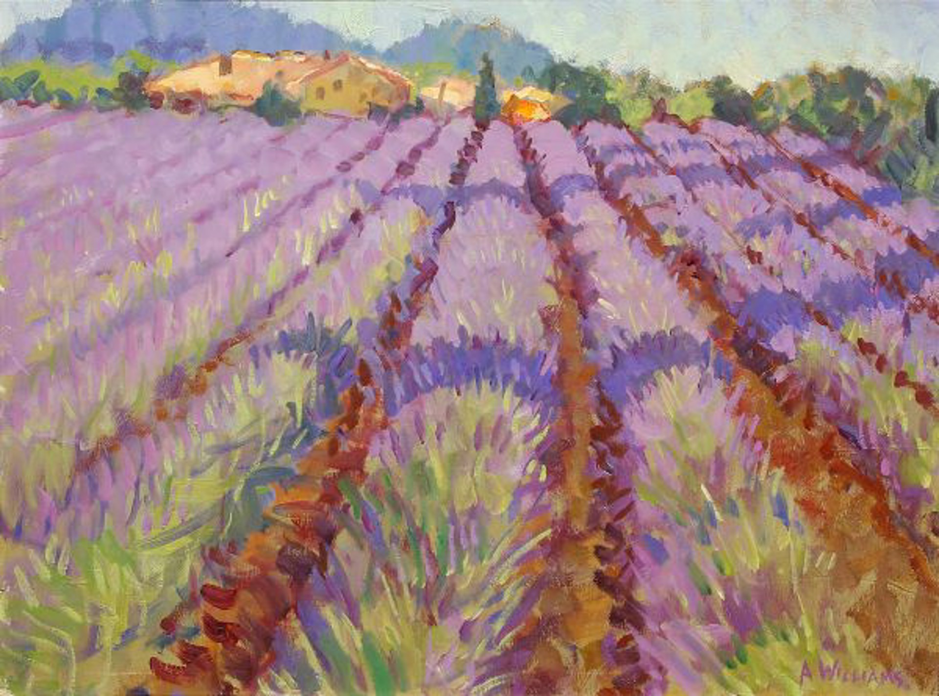 Lavender Fields I by Alice Williams