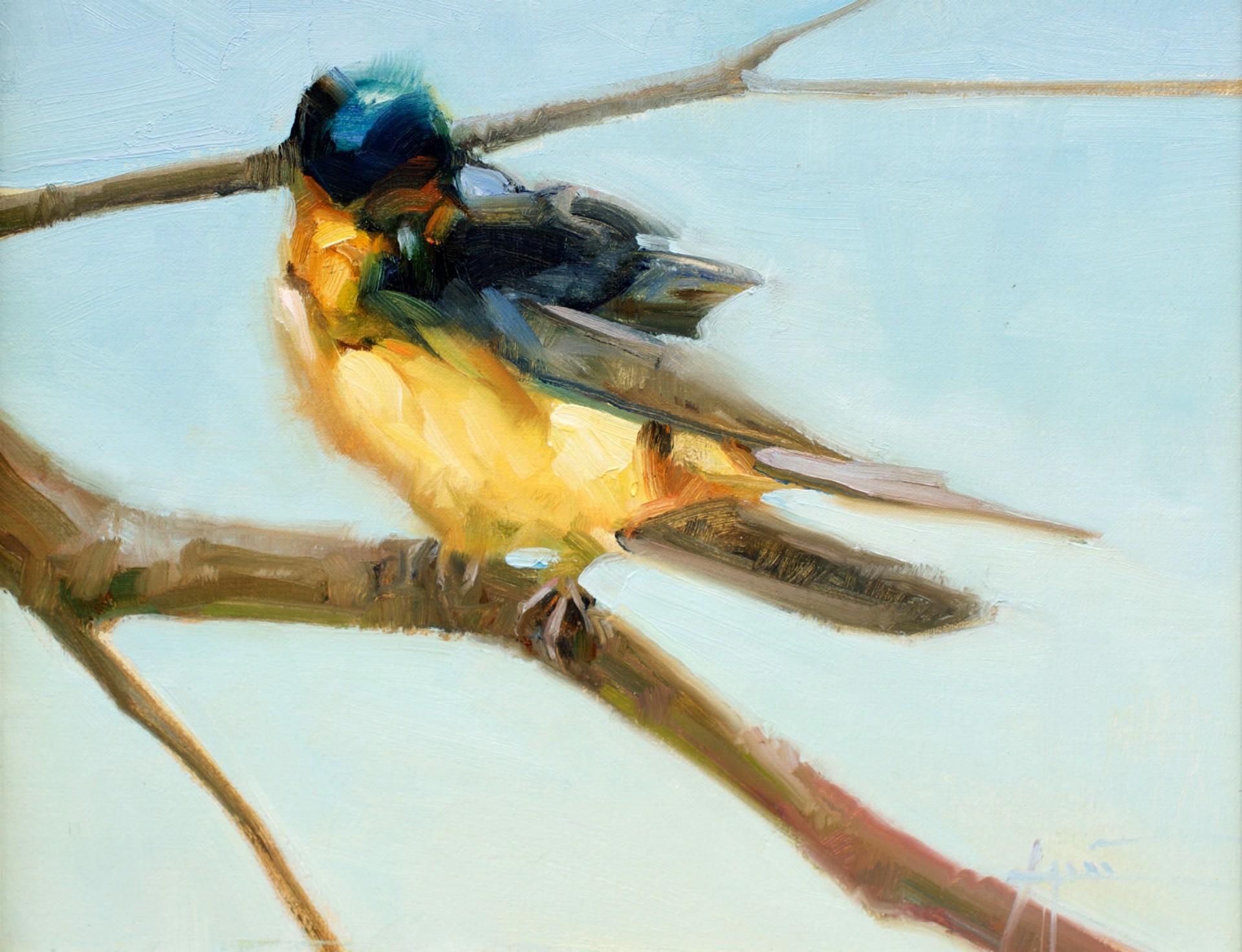 Swallow Tree by Lani Vlaanderen