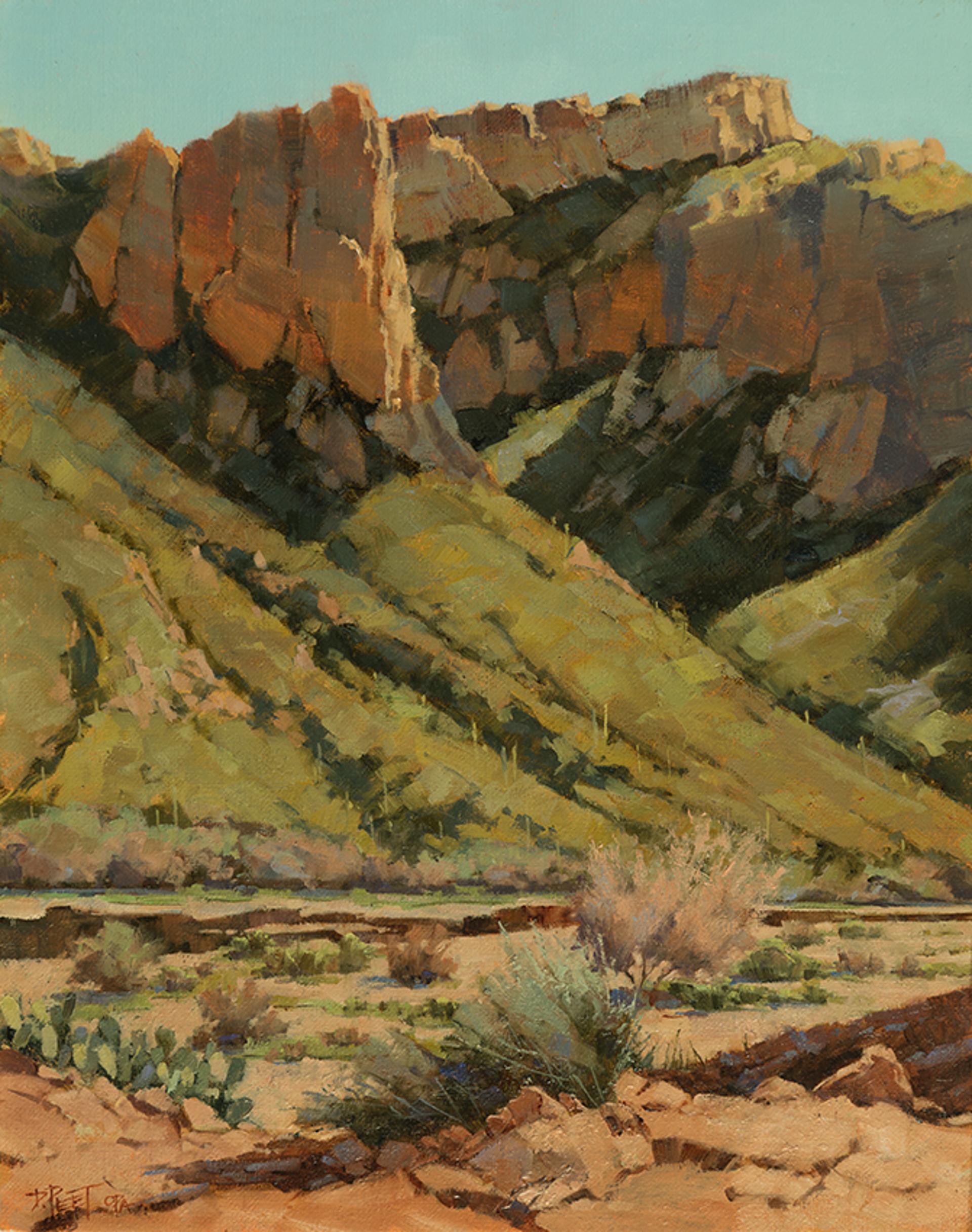 Sunblazed Canyon by Darcie Peet