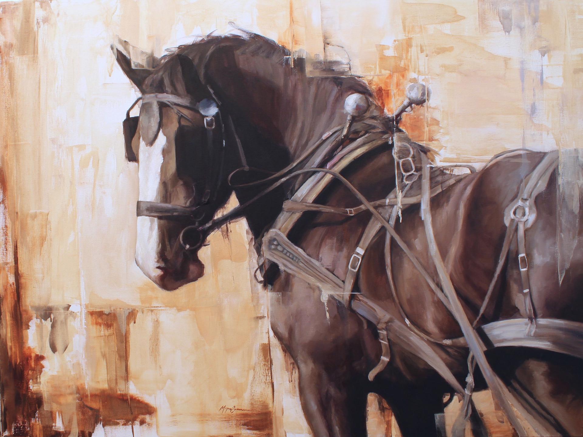 The Shire by Morgan Cameron
