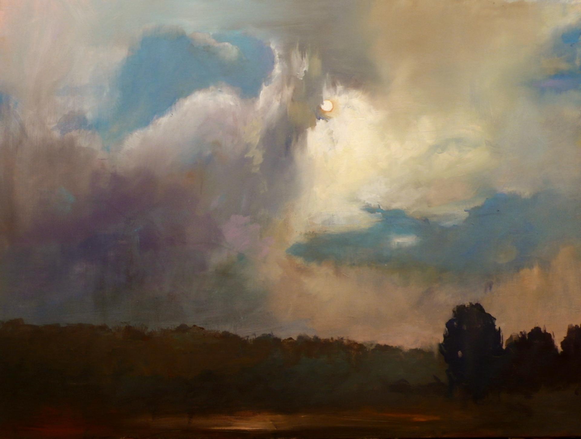 Midnight Nocturne by Tobin G Karicher