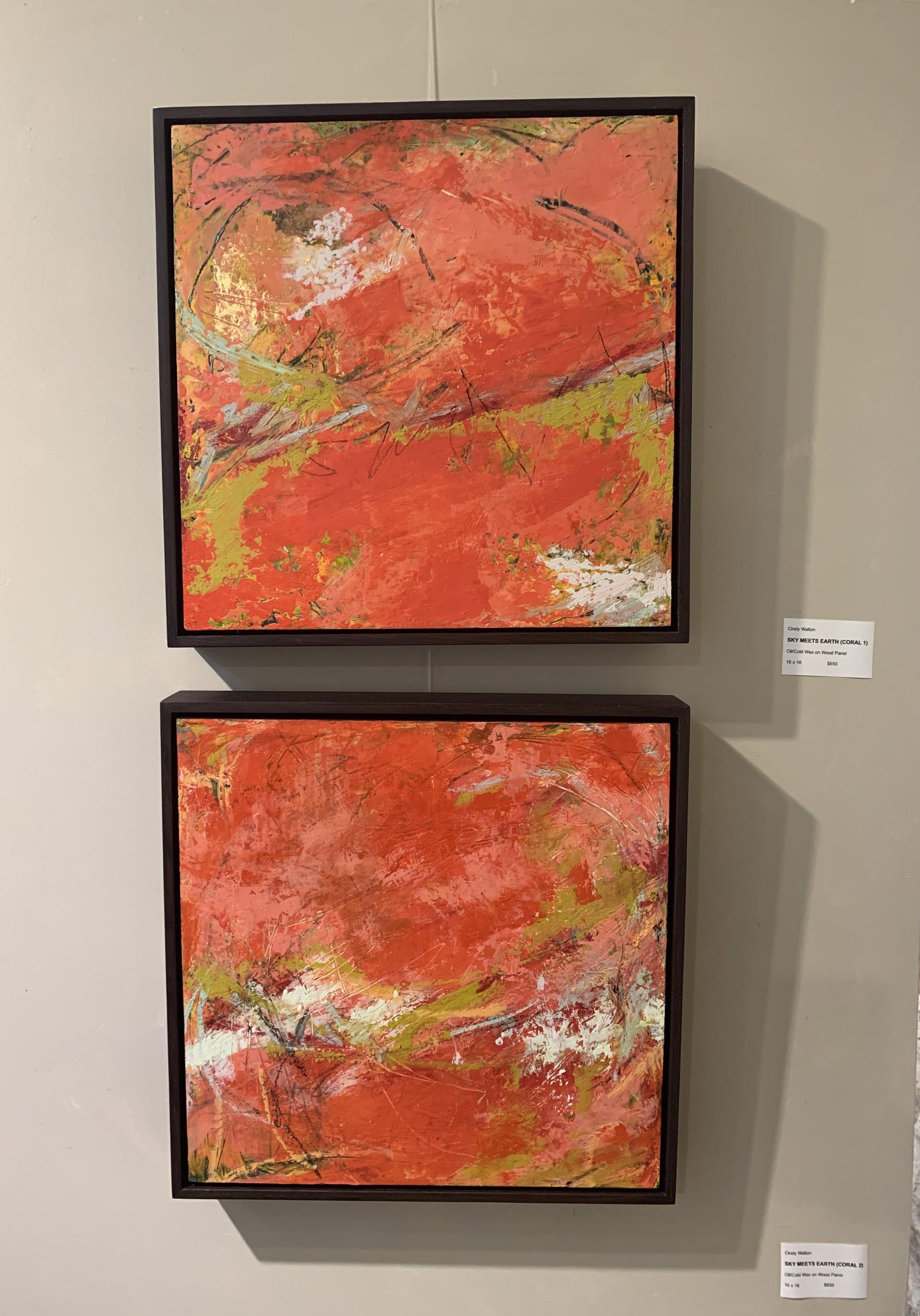 Sky Meets Earth (Coral 2) by Cindy Walton