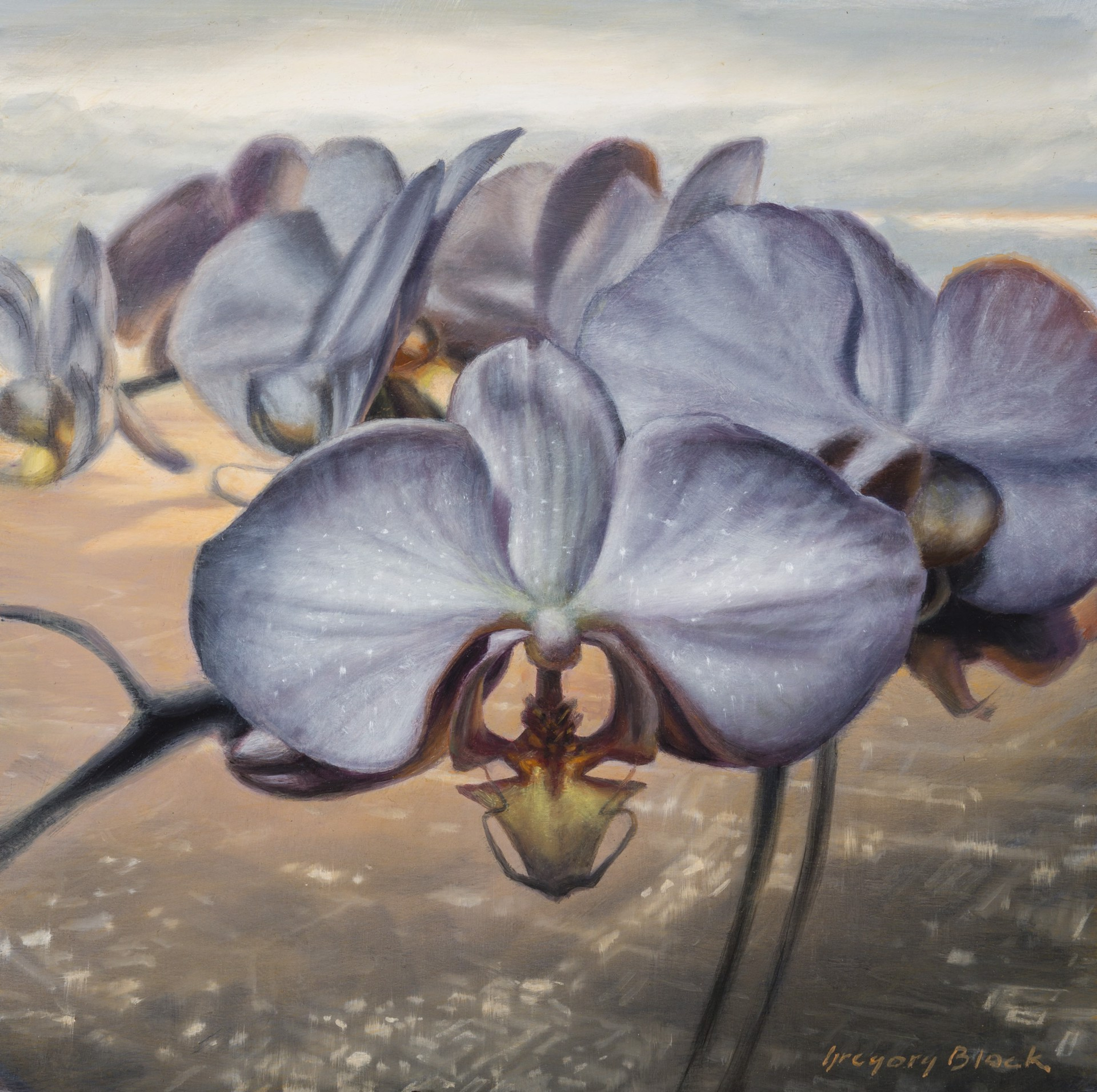 Orchid 2 by Gregory Block