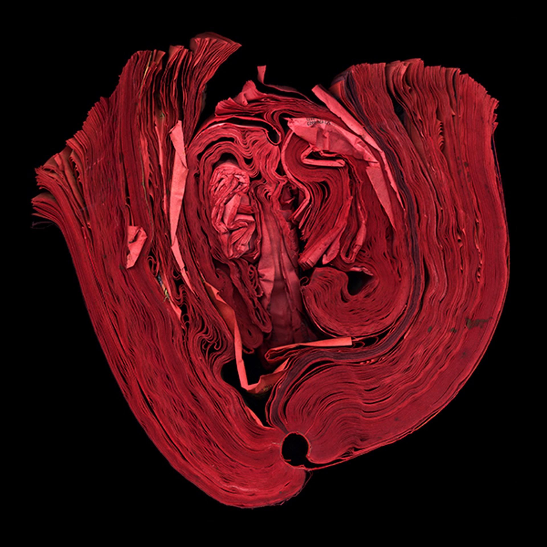 Heart by Cara Barer