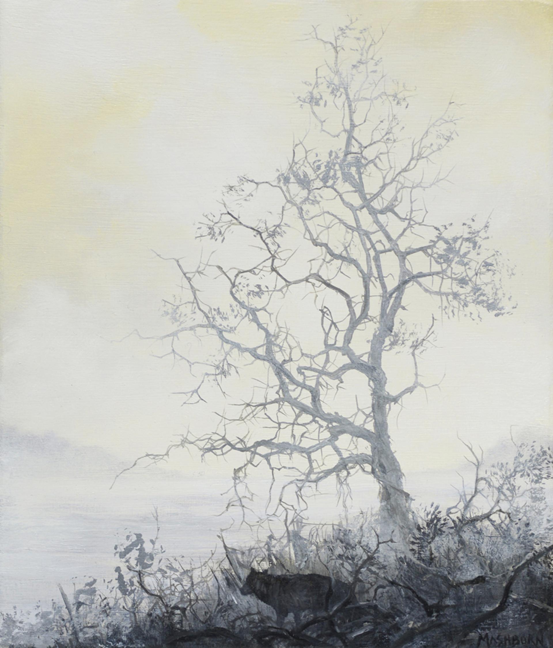 Wolf 1 by Brian Mashburn
