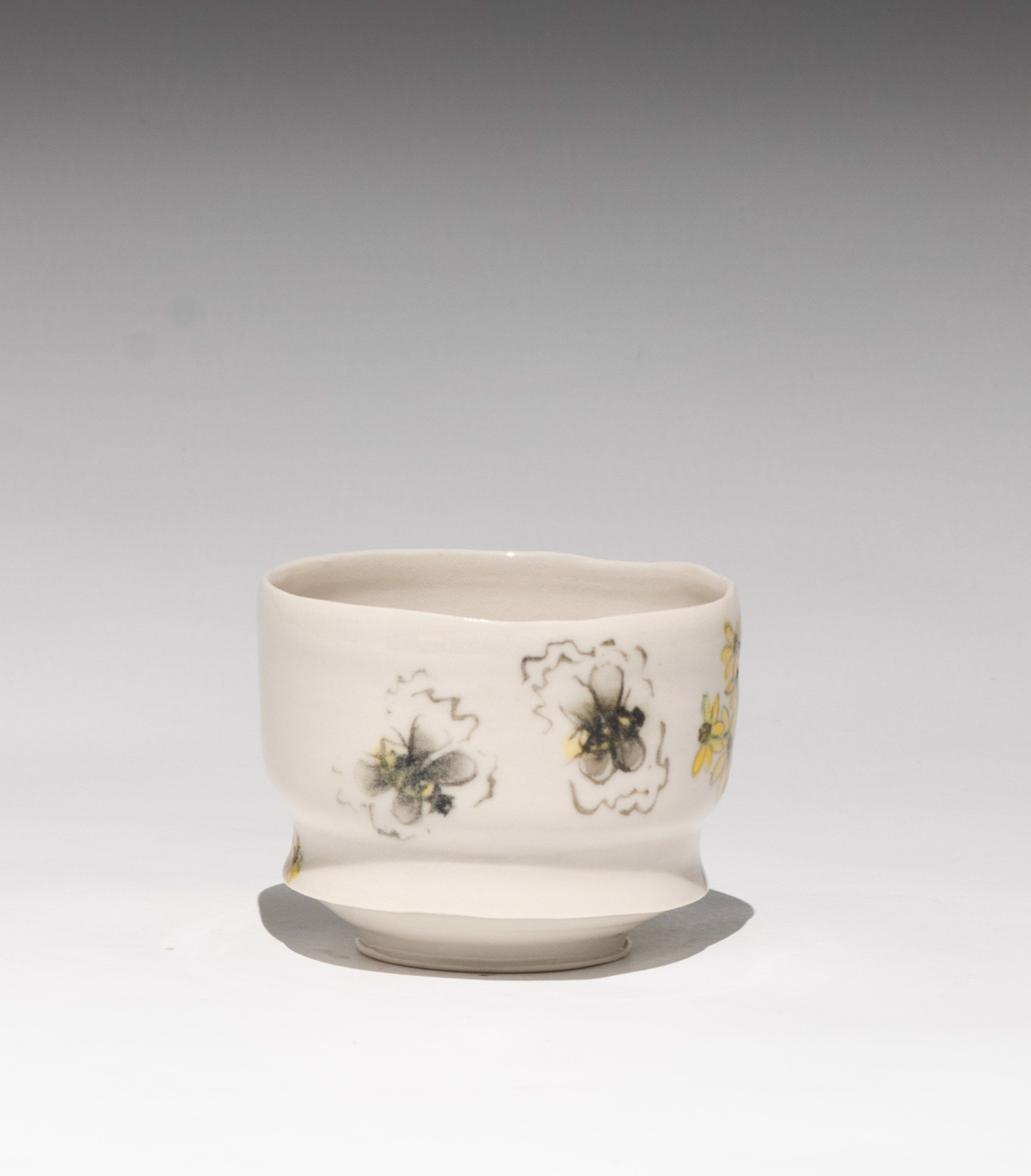 Insect Tea Bowl 8 by Caroline Bottom Anderson