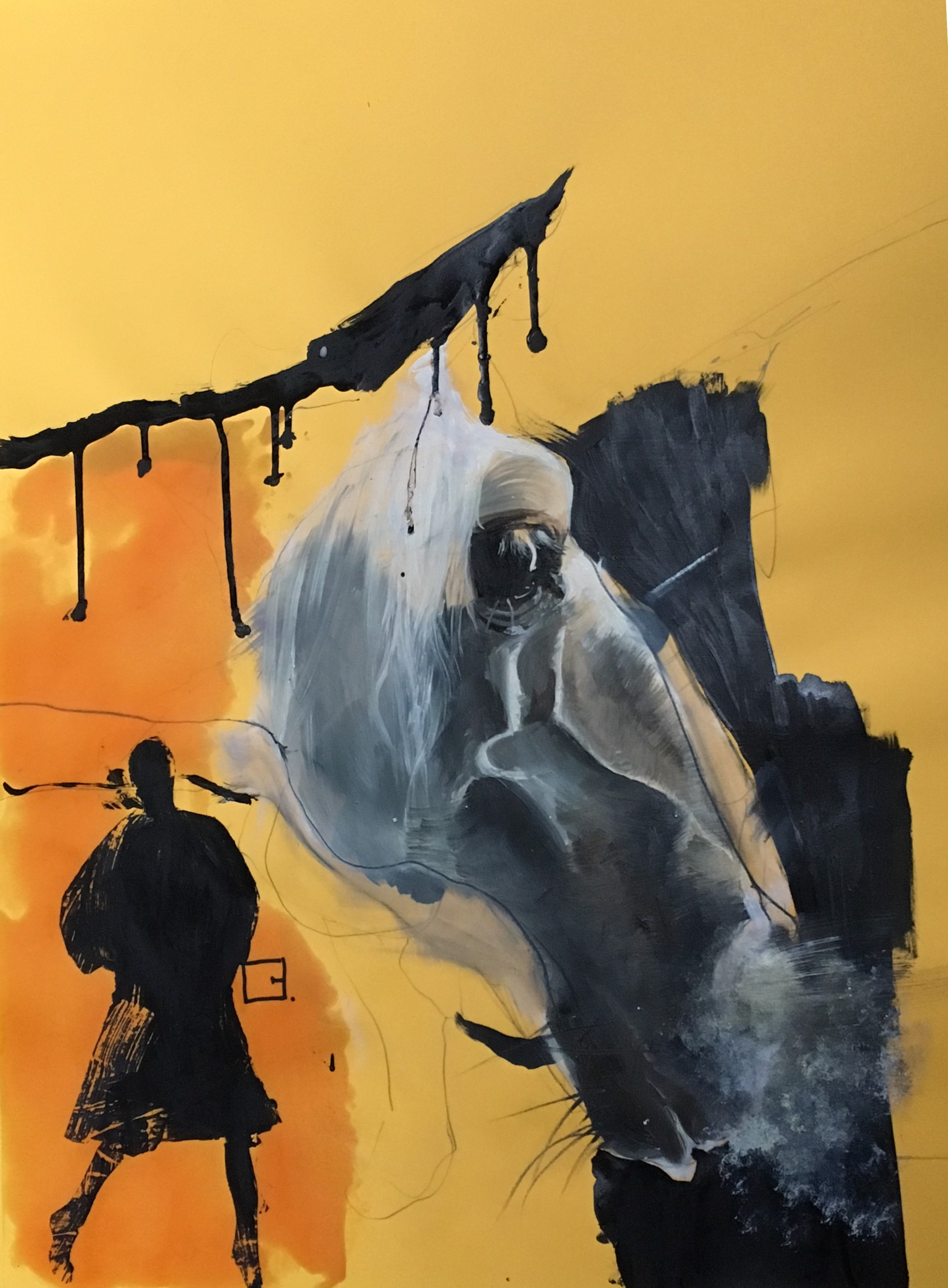 horse meets shadow by Olga Gál