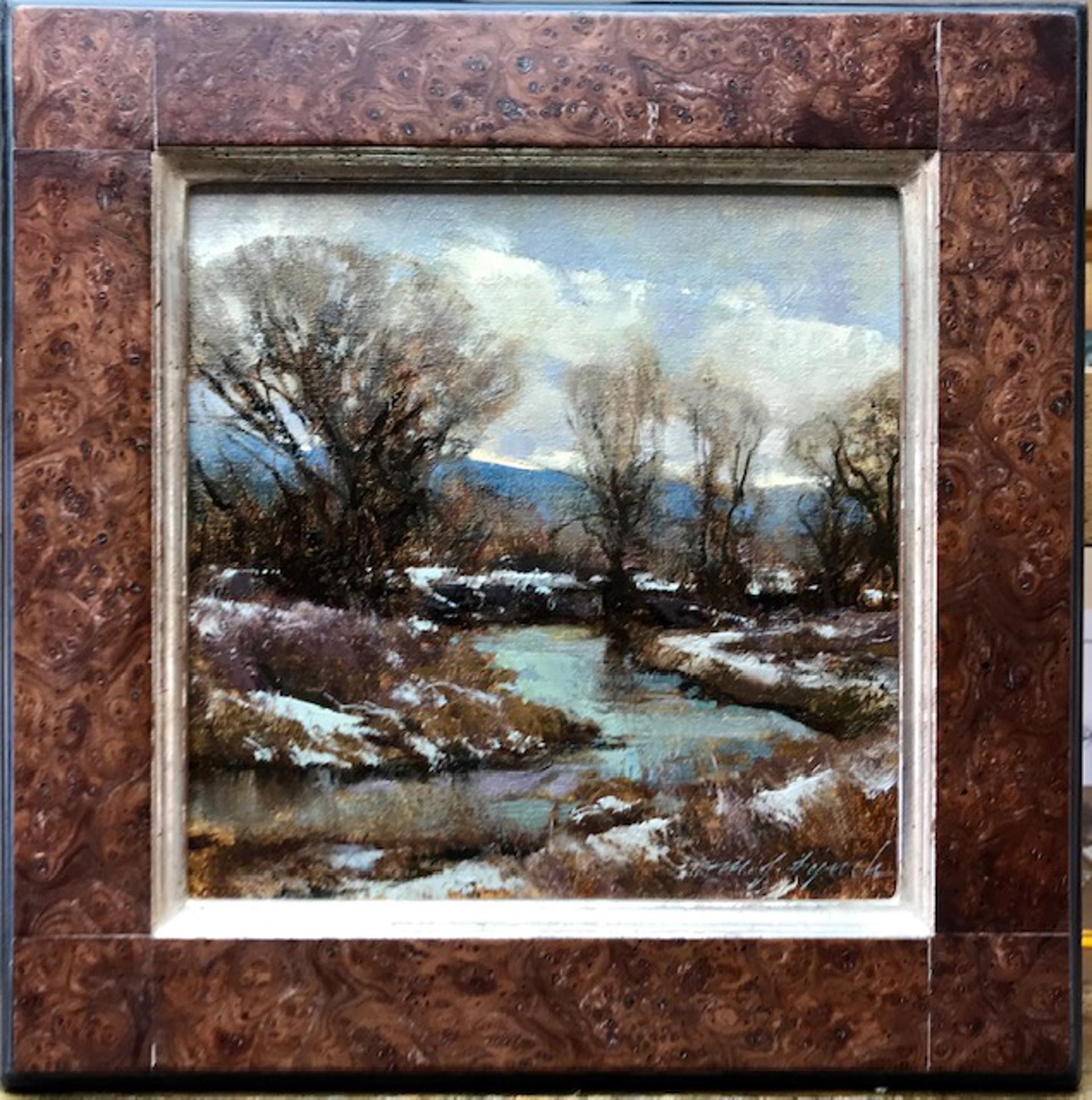 Platte River Overcast by Michael J Lynch