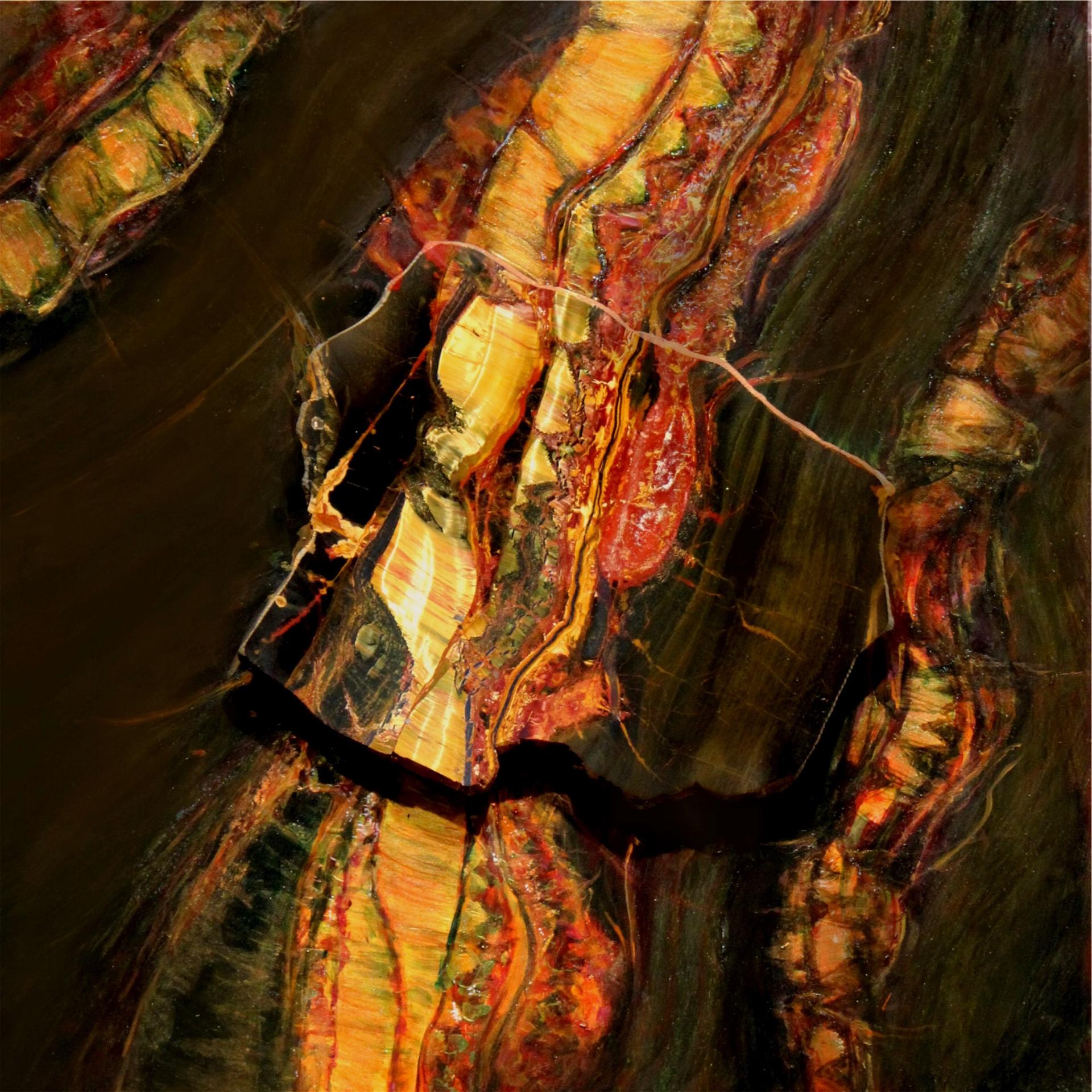 Eye of the Tiger (Marramamba) by Redhawk Mallet