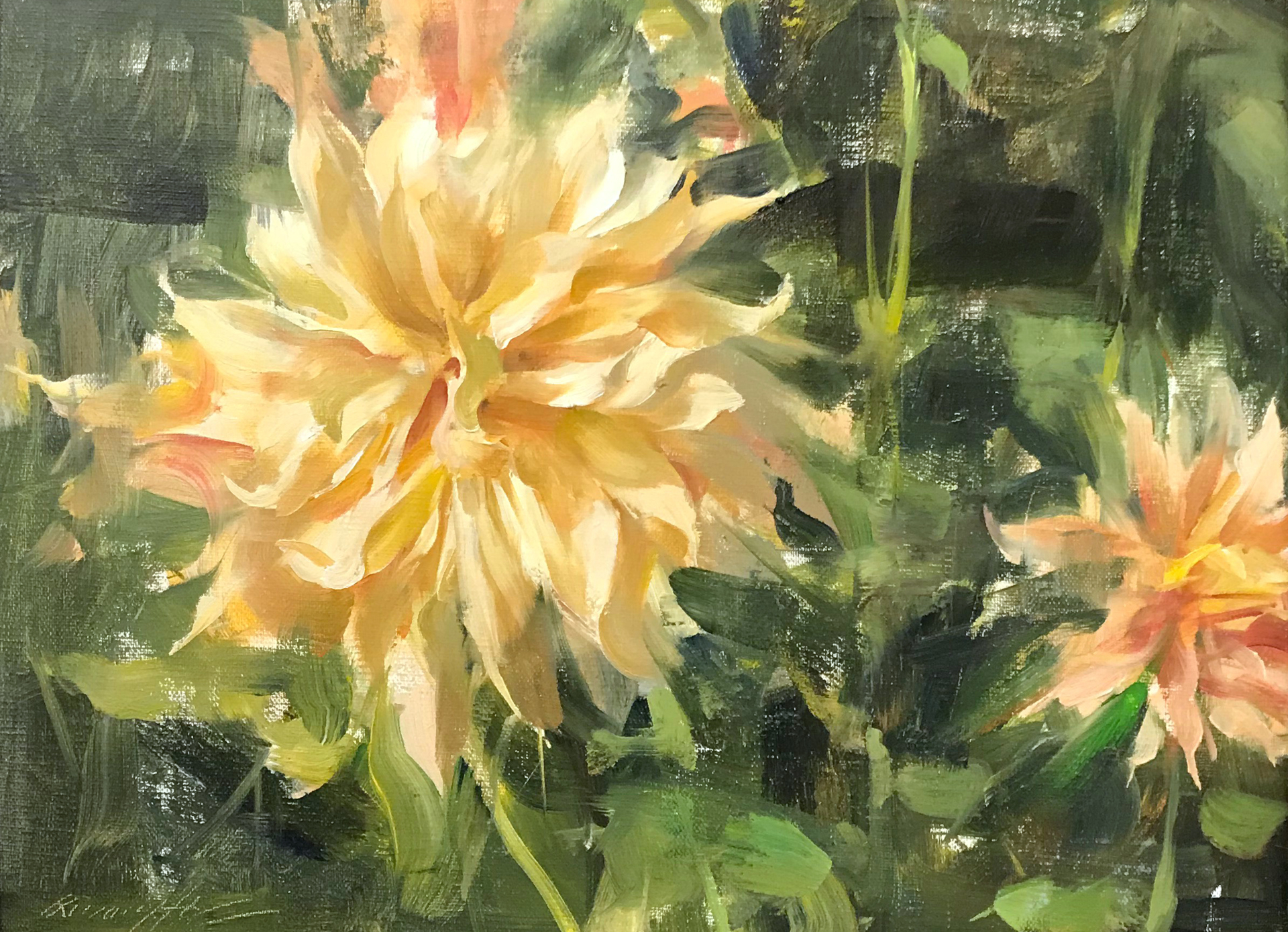Dahlias by Quang Ho