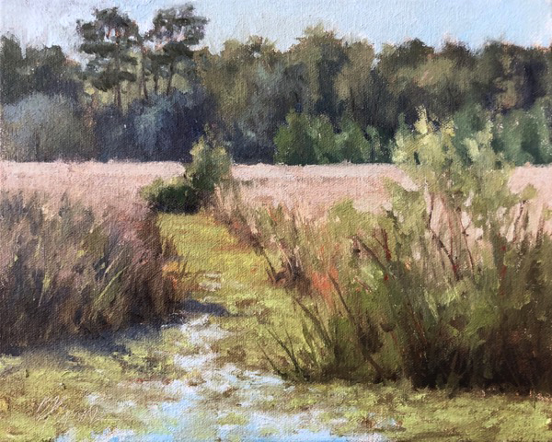 Rice Field at Rest by Beverly Ford Evans