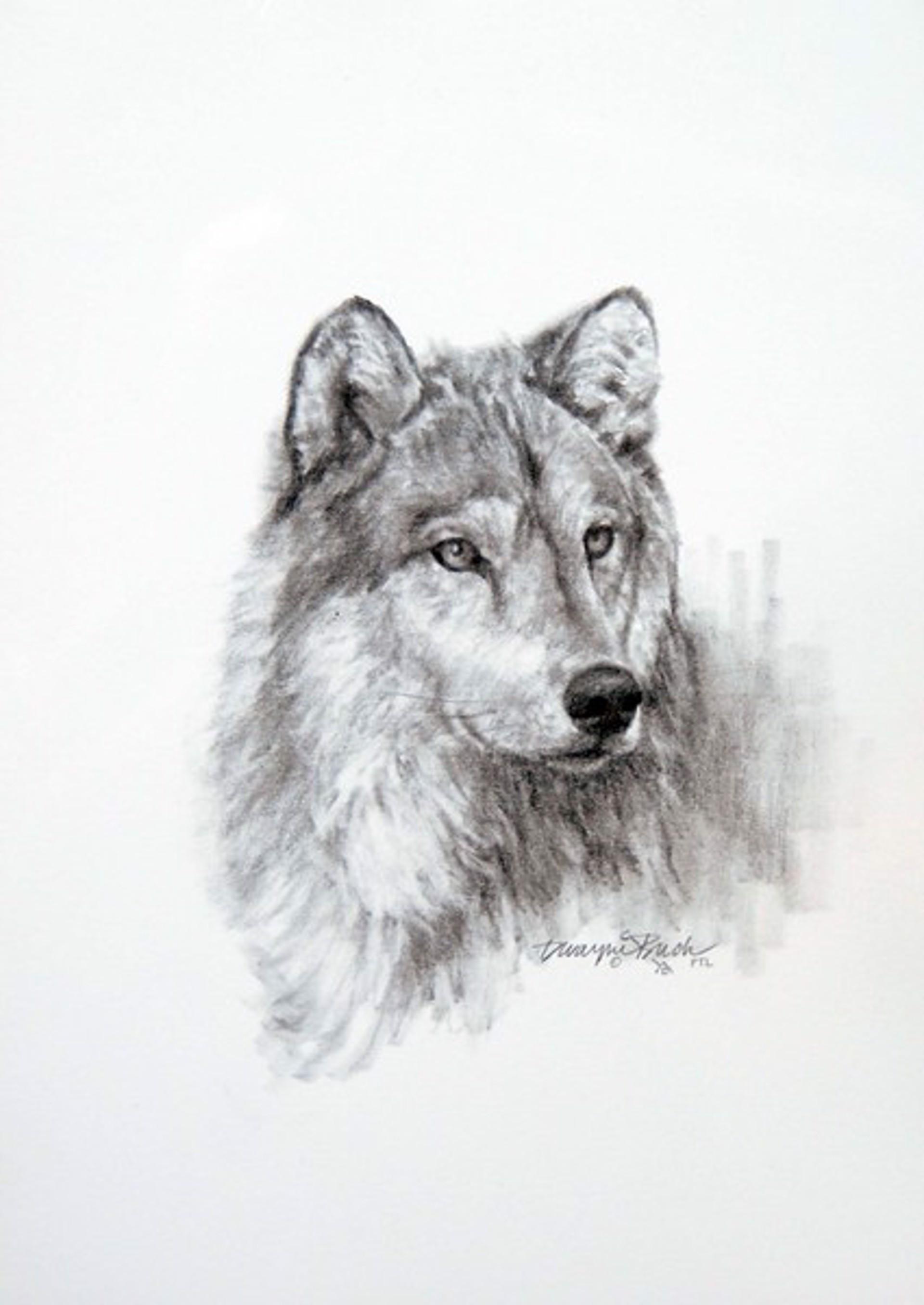 Wolf by Dwayne Brech
