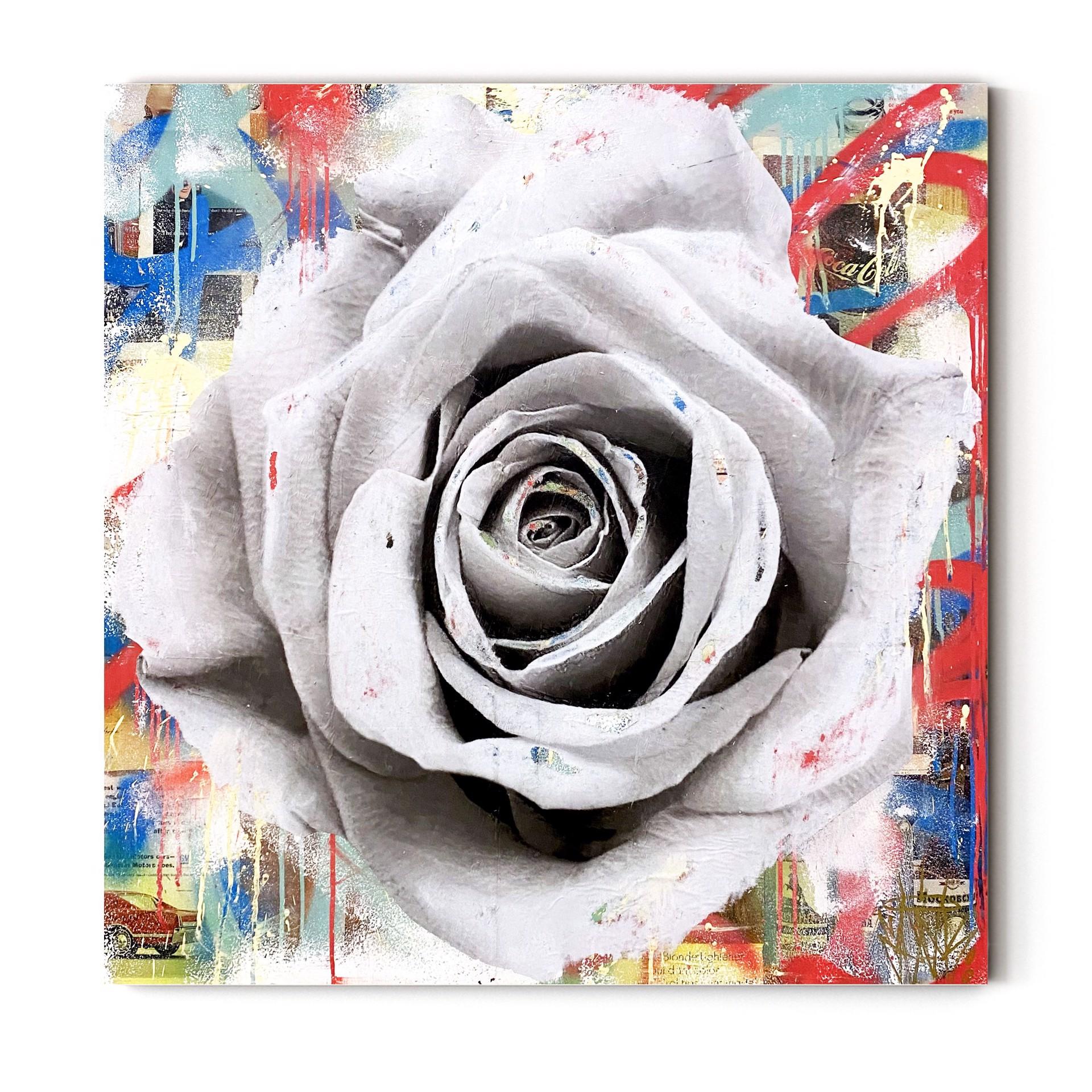 Rose by Seek One