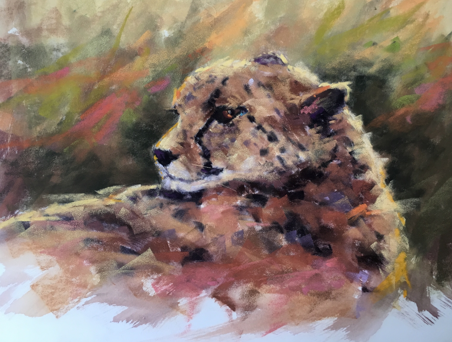 Grumpy Cat by Cecilia Murray