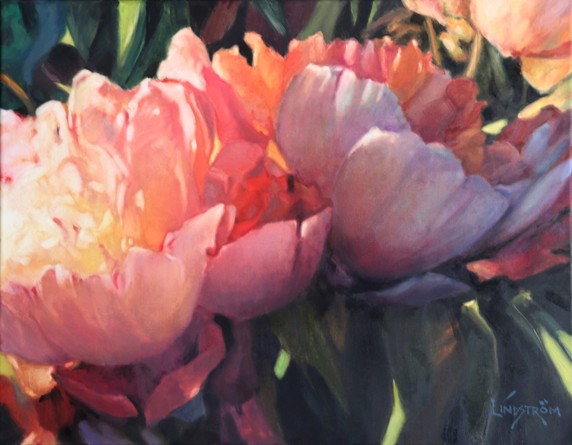 Peonies from Heaven by Bart Lindstrom