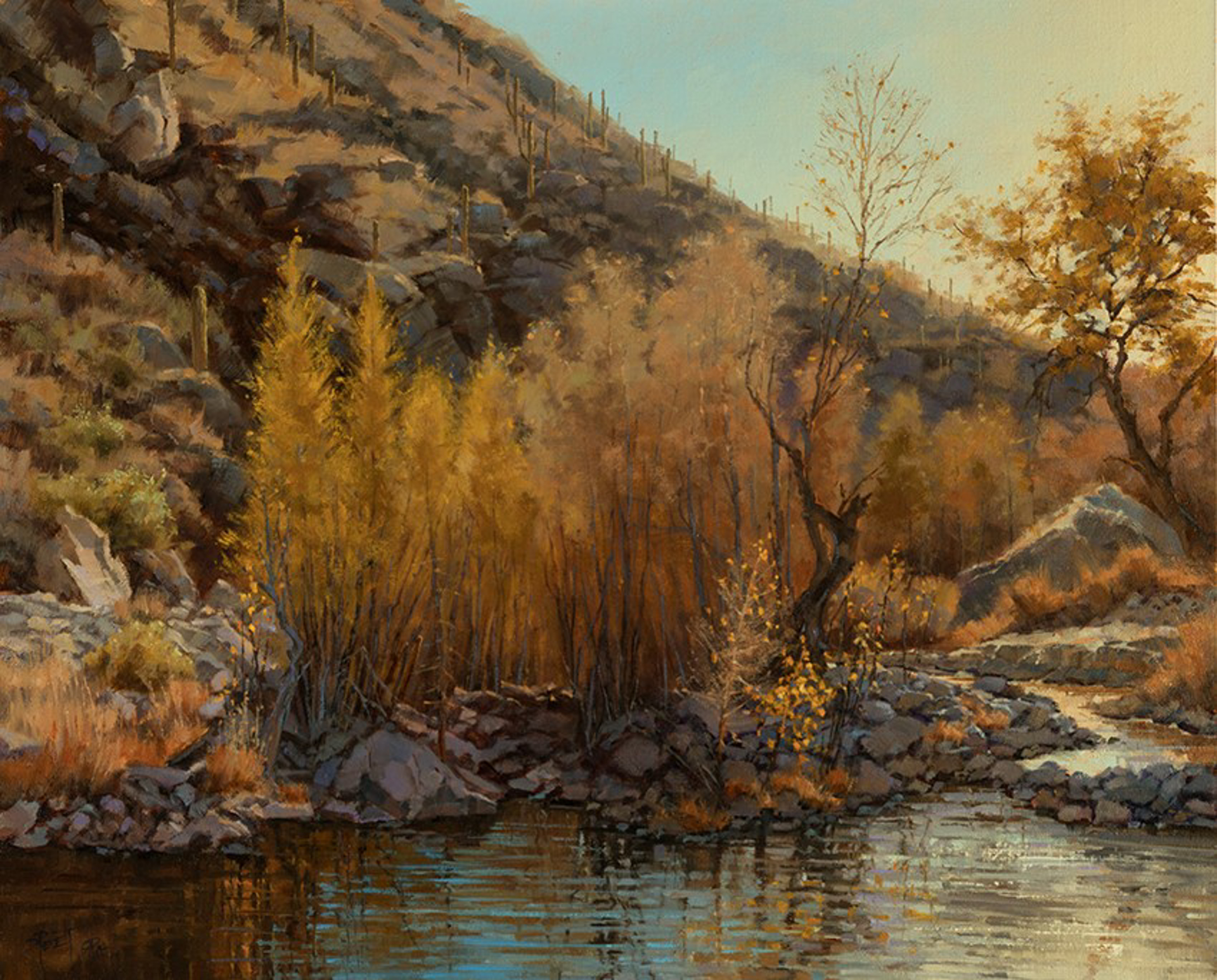 Gilded in Autumn - Sabino Canyon by Darcie Peet