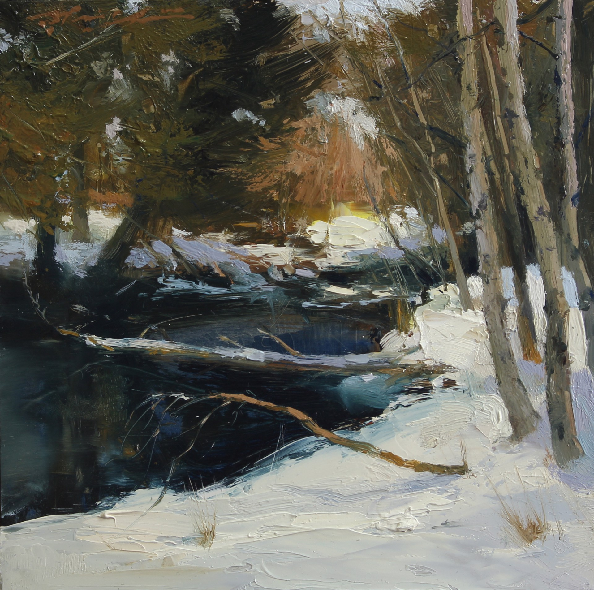 June Lake Snow by Hsin-Yao Tseng