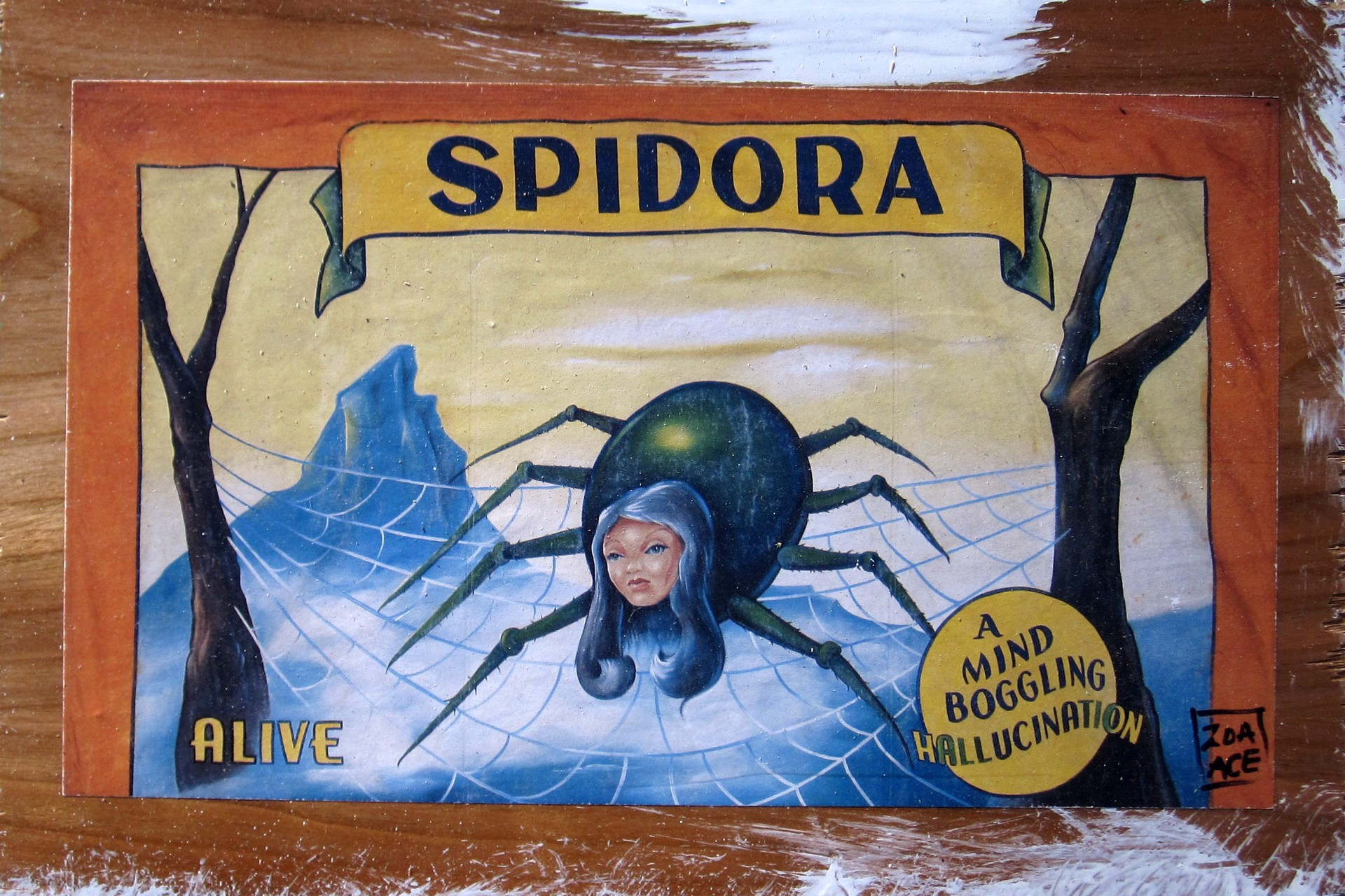Spidora by Zoa Ace