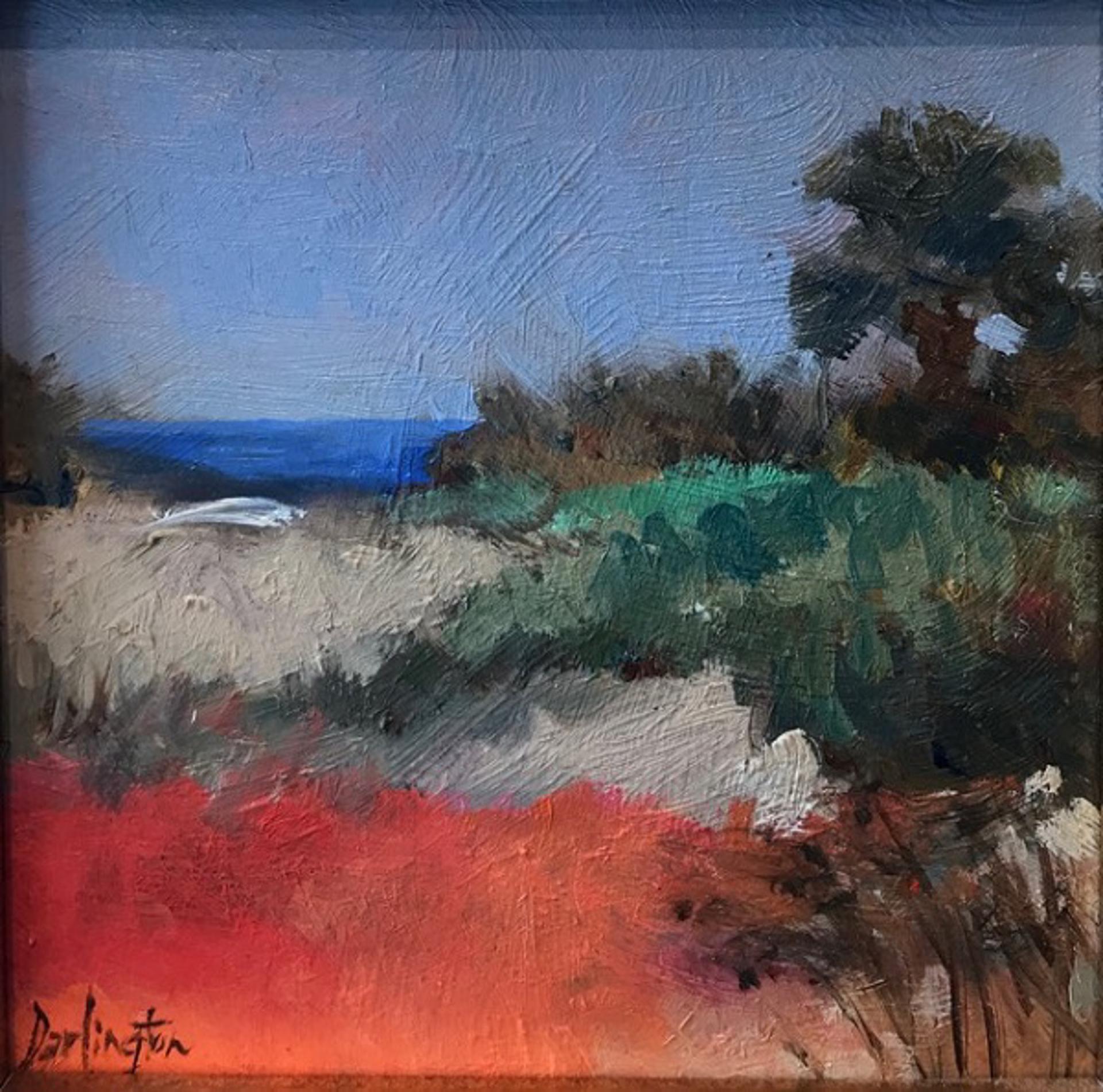 Beyond The Dunes by Jim Darlington